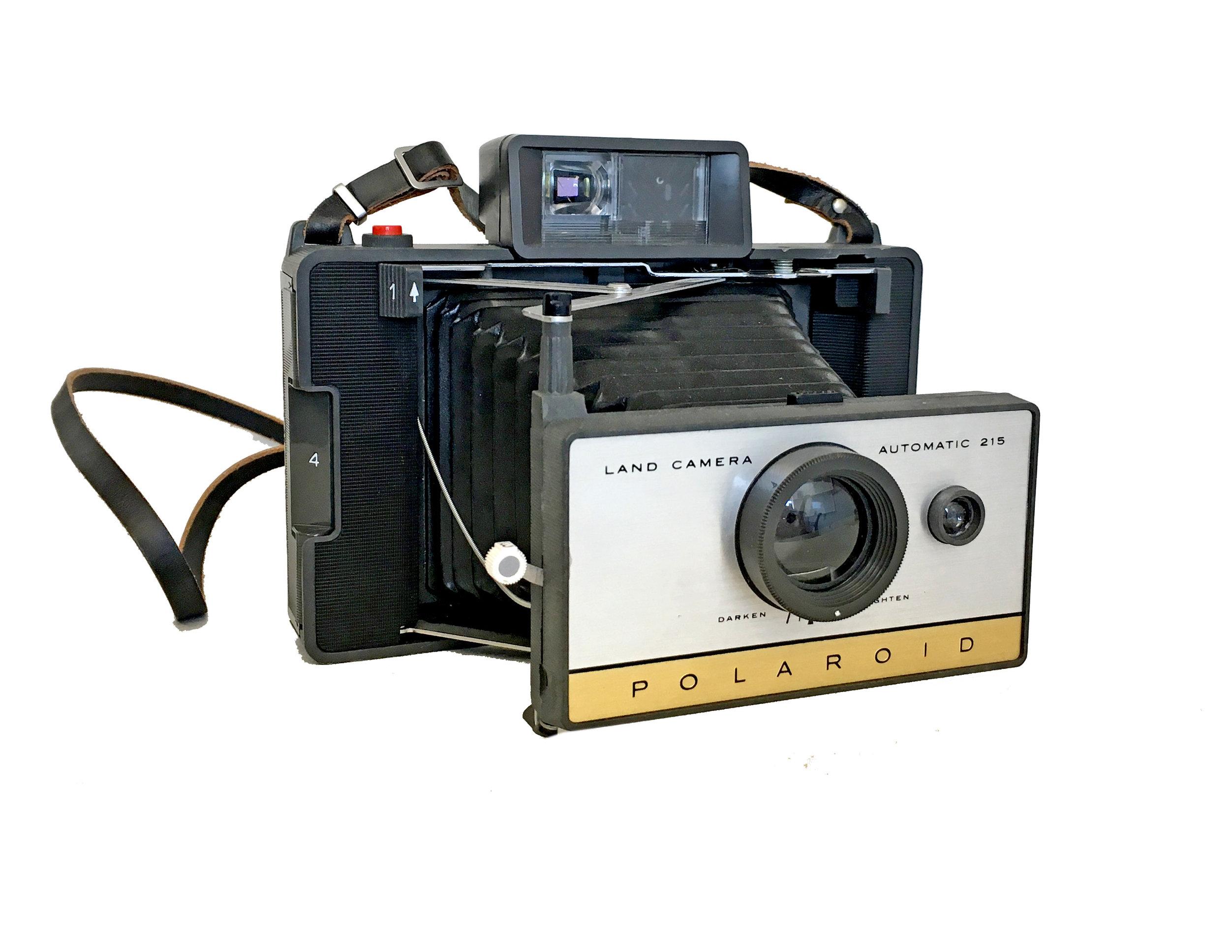 Polaroid 215.jpg