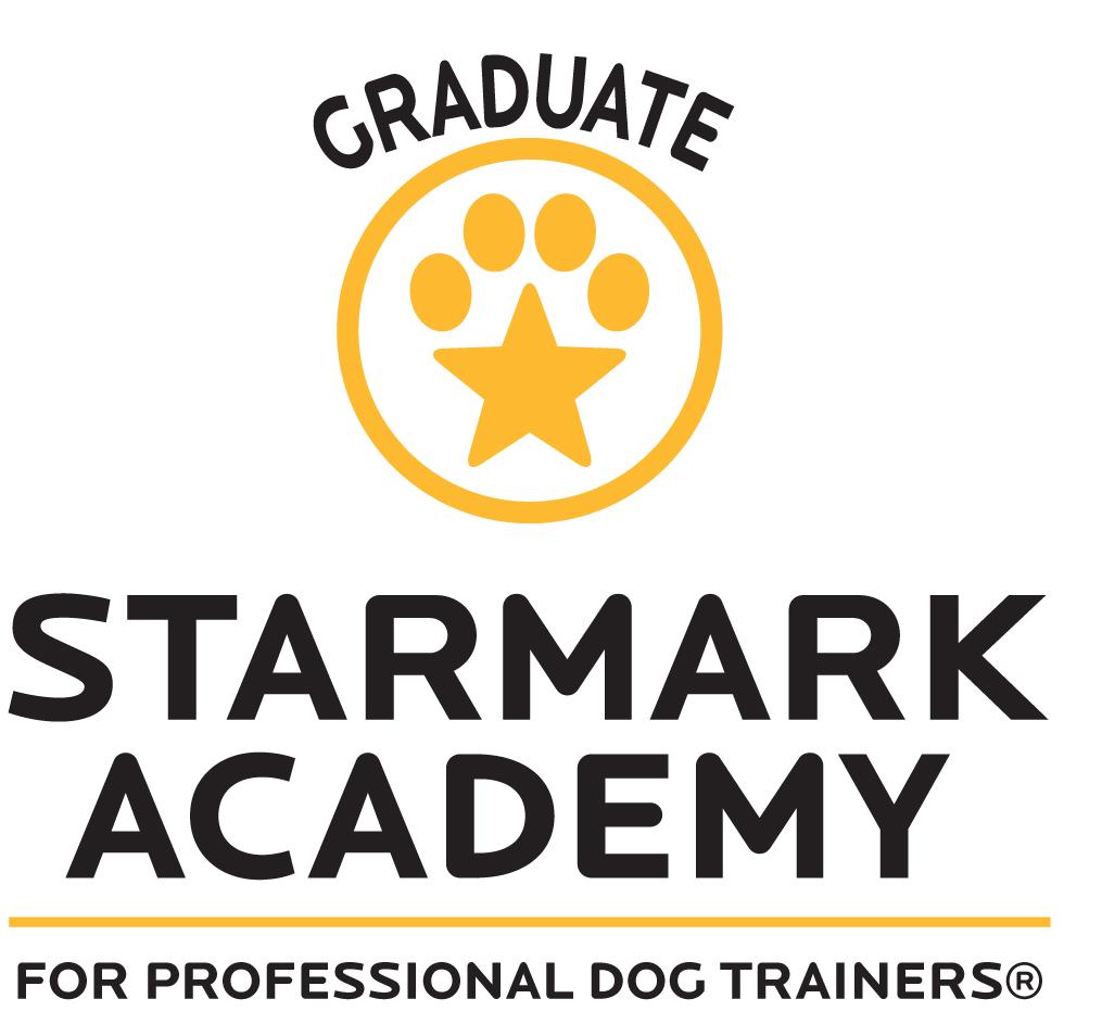 Starmark Academy logo all V-grad.jpg