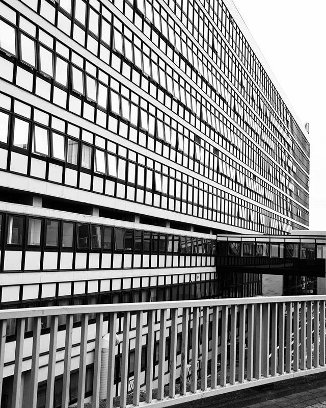 windows of opportunity  #blackandwhite #blackandwhitephotography #blackandwhitephoto #bnw #monochrome #mono #bw #architecture #archidaily #architecturelovers #architecturephotography #archdaily #archilovers #architektur #ig_architecture #britisharchitecture #modernistarchitecture #modernarchitecture #postwararchitecture #arquitectura #arquitecturamoderna #sheffield #sheffieldhallam #repetition #buildinglover #buildinglovers #buildingporn #lookingup_architecture #rsa_architecture #sheffieldissuper