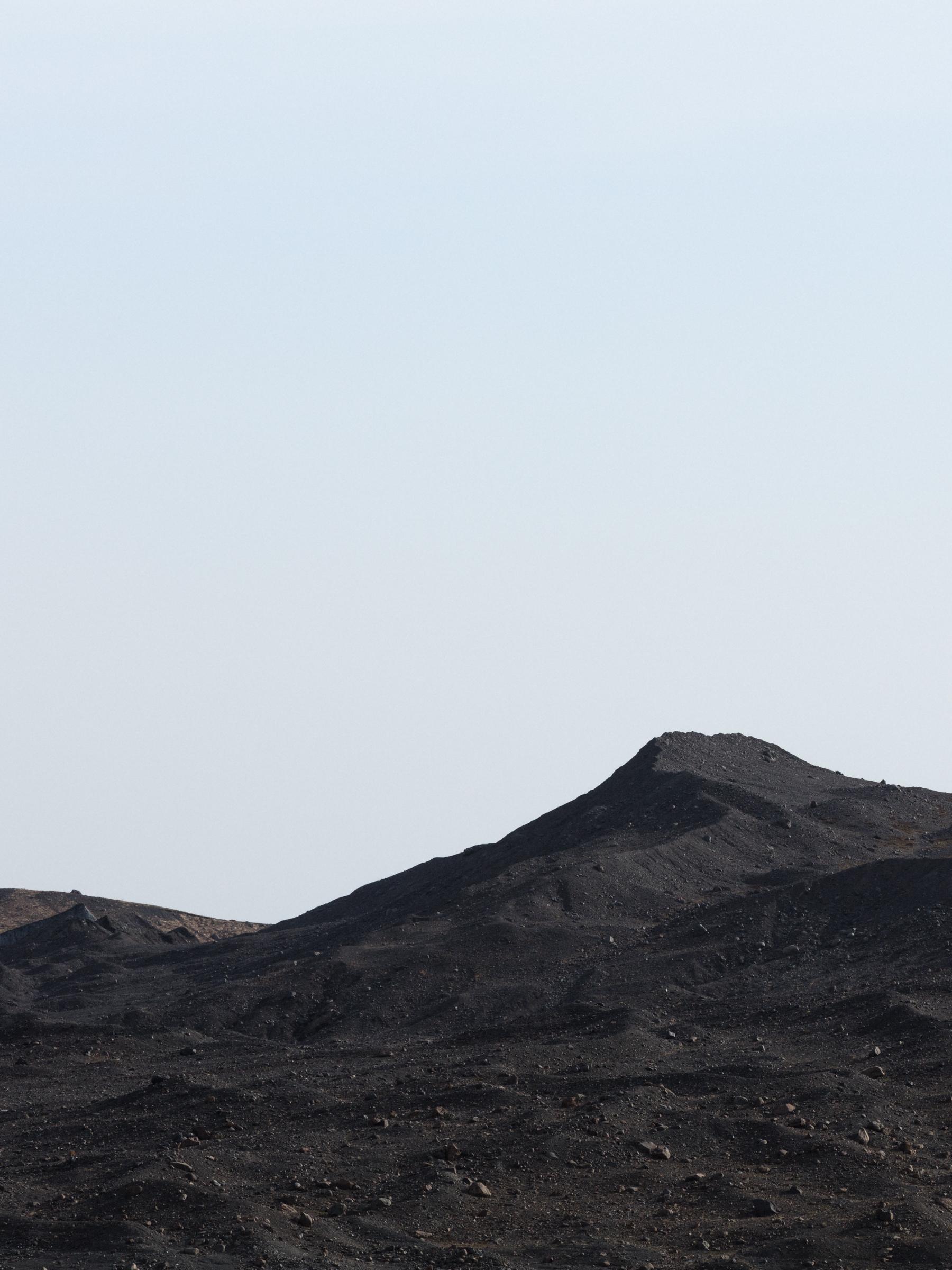 Black mountain, South Iceland - Faune