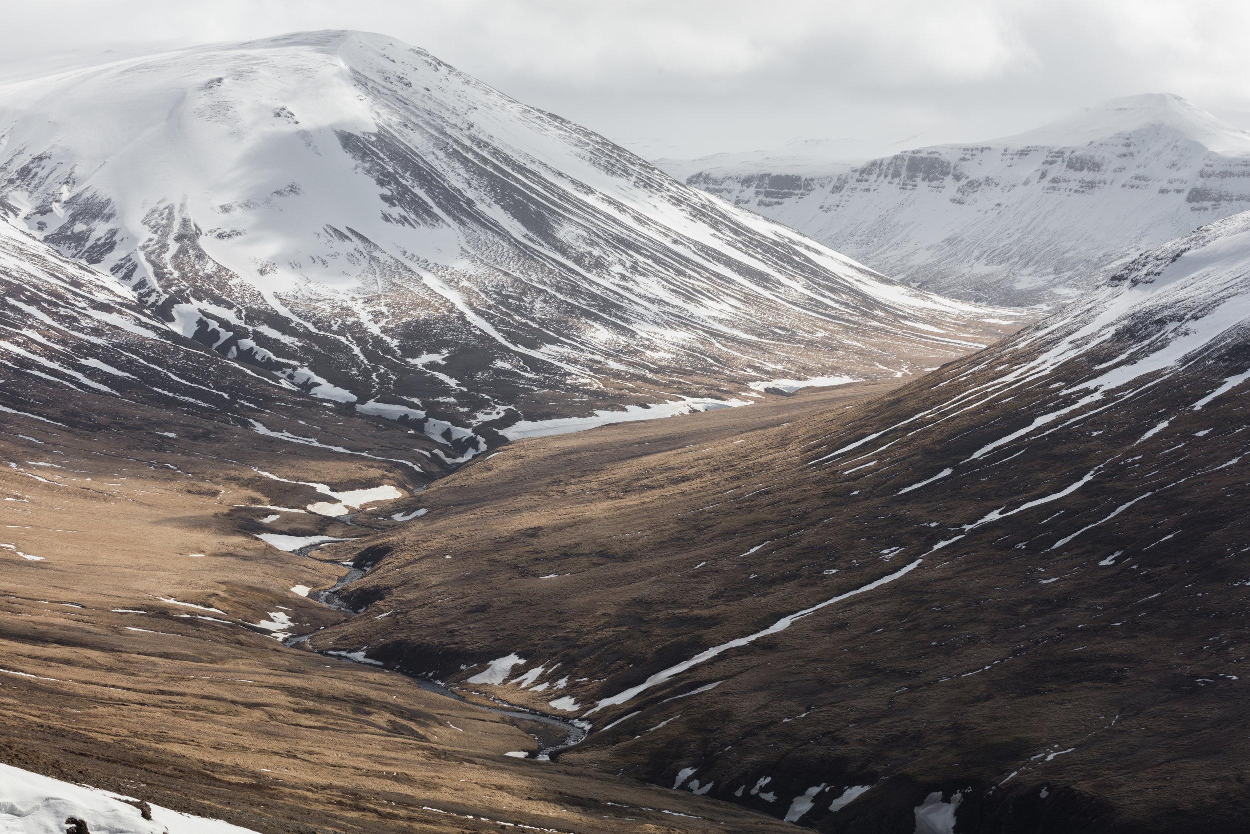 Icelandic Mountain Valleys | The Fox Plateau - Faune
