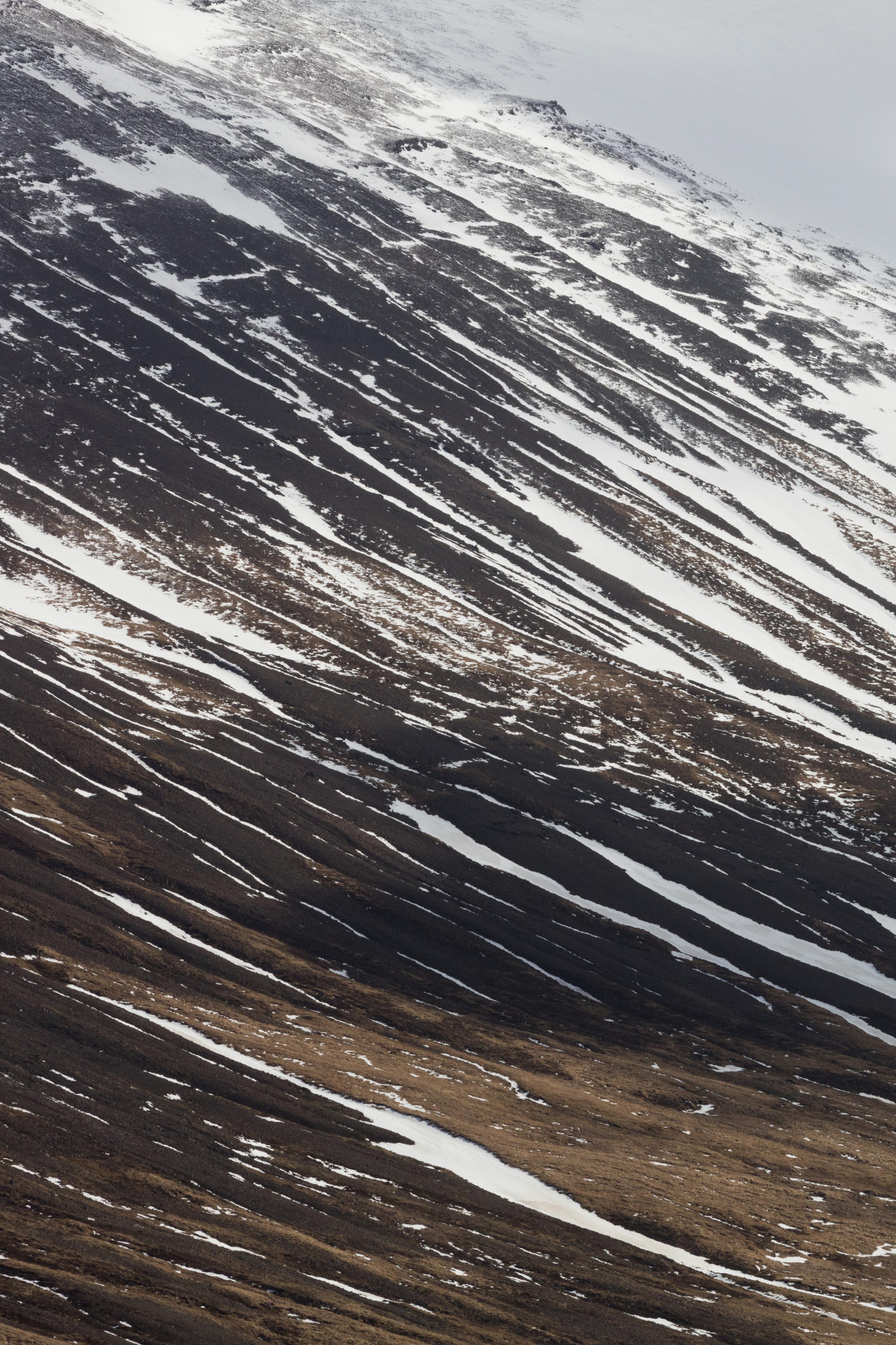 Mountain Detail | The Fox Plateau - Faune