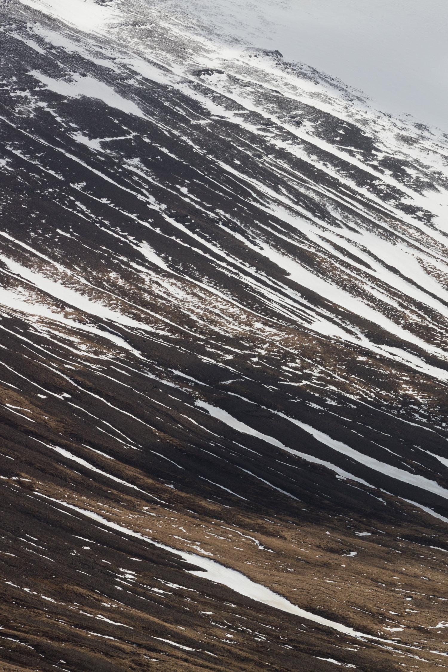 Mountain+Detail+|+The+Fox+Plateau+-+Faune.jpg