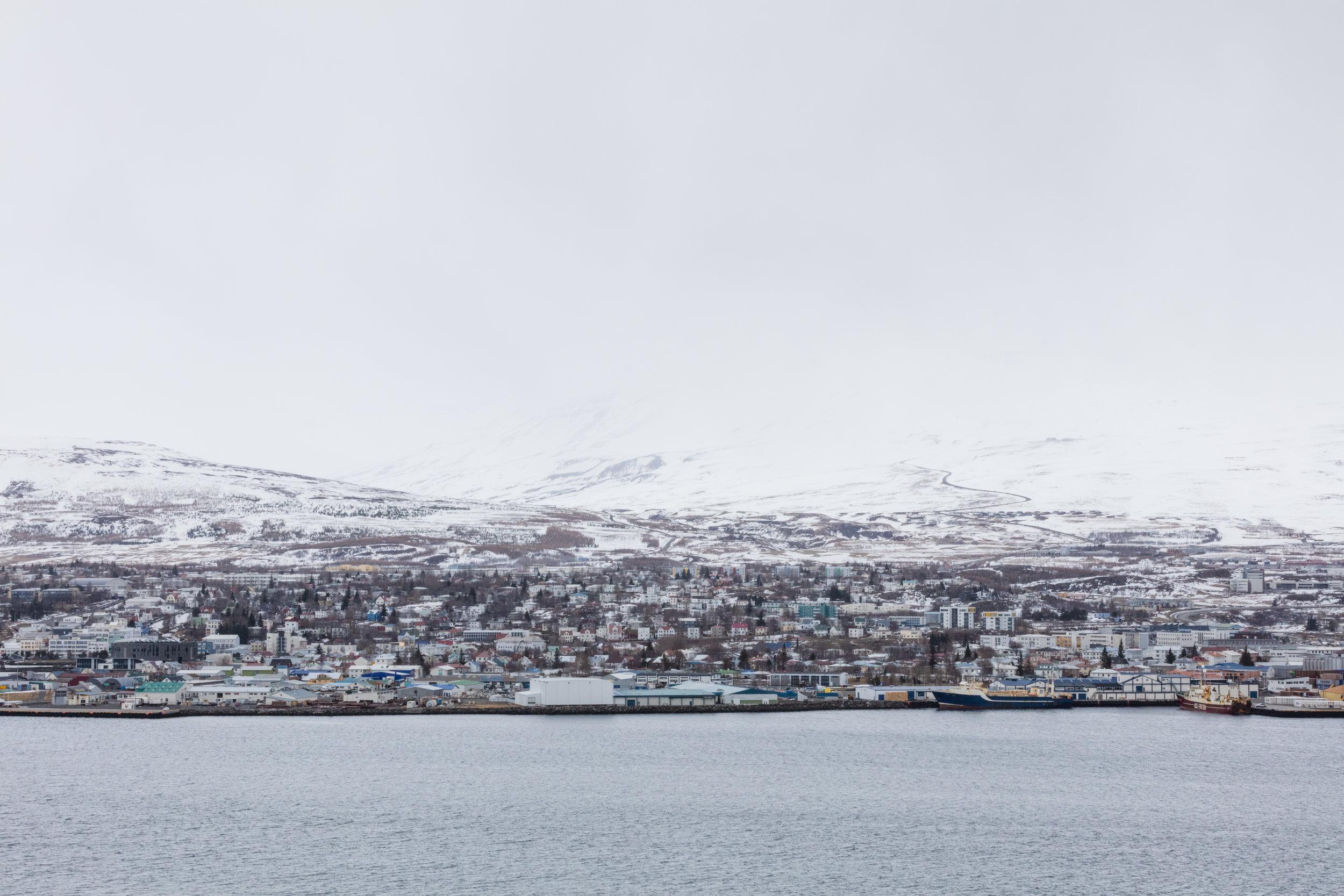 Akureyri+|+Landscapes+North+Iceland+-+Faune.jpg