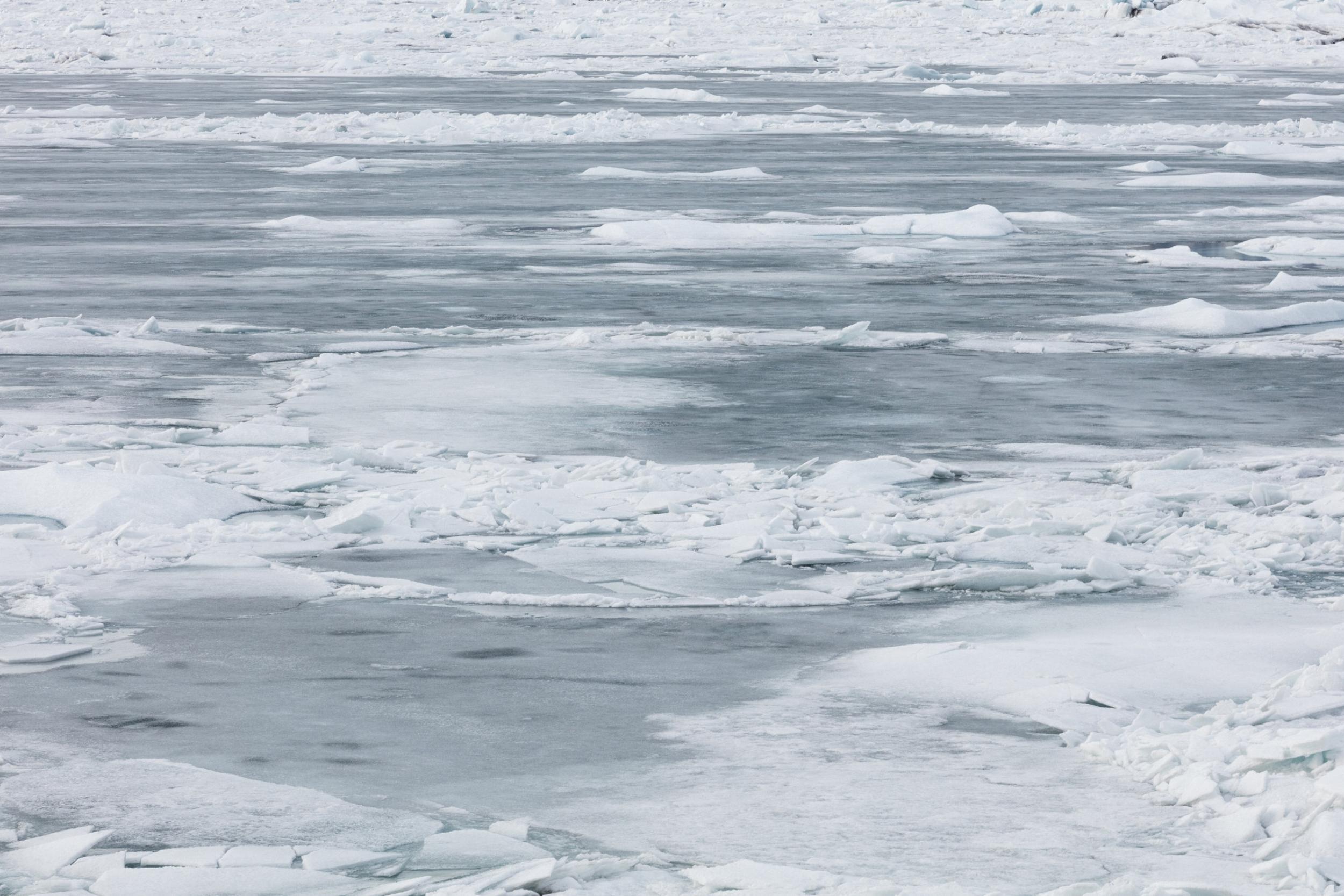 Jökulsárlón+Glacier+Lagoon+|+South+Iceland+-+Faune.jpg
