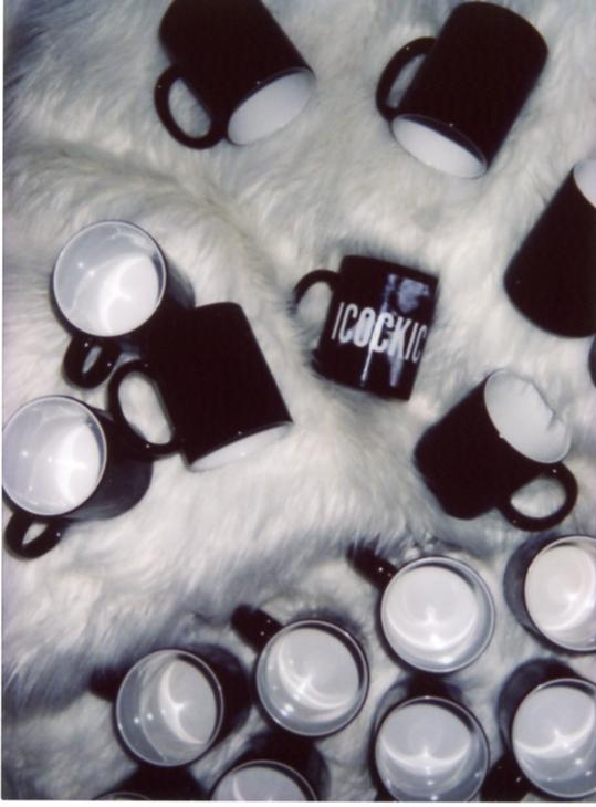 mug pics323.jpg
