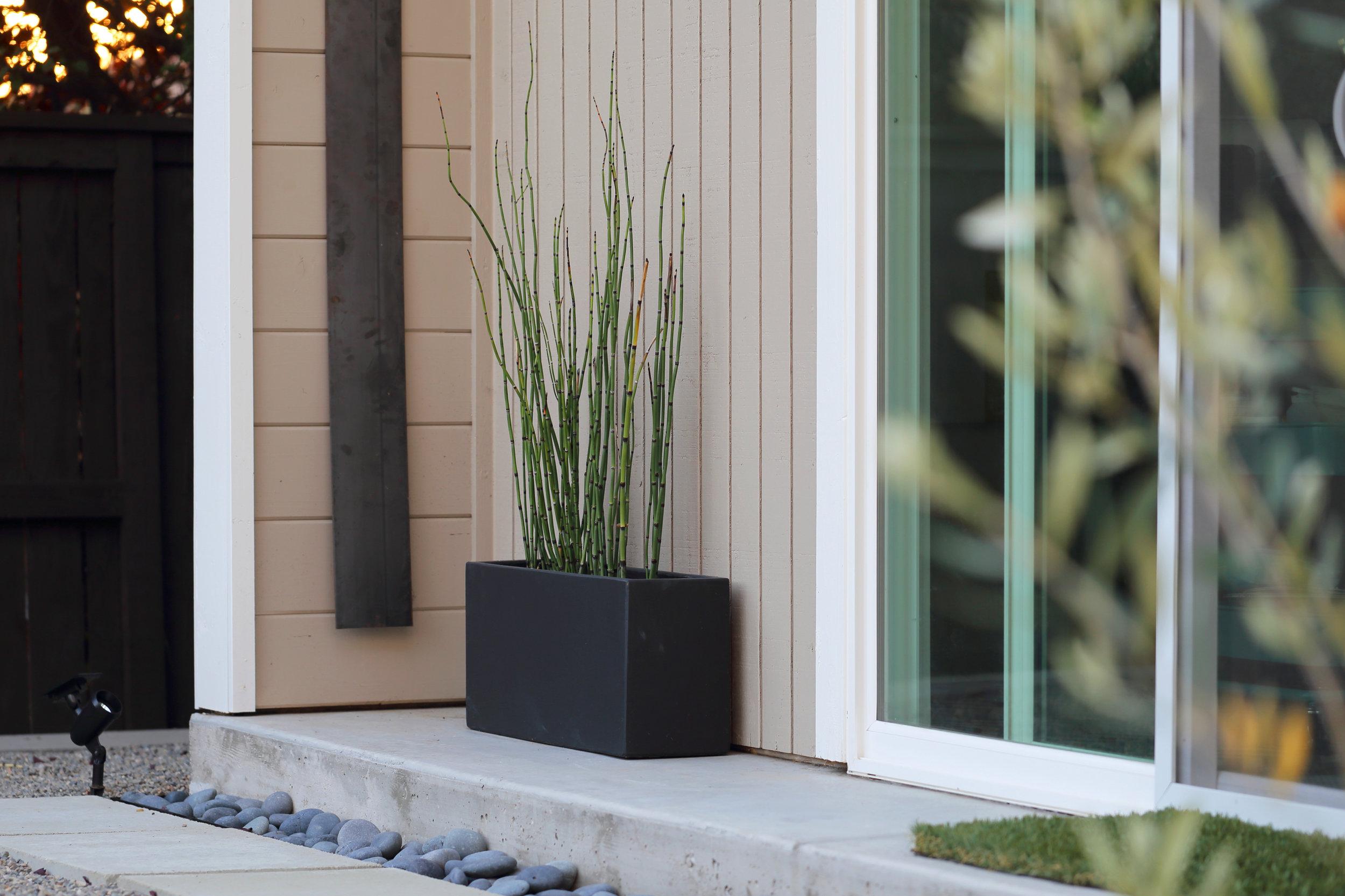 San Luis Obispo Landscape Design Art Studio