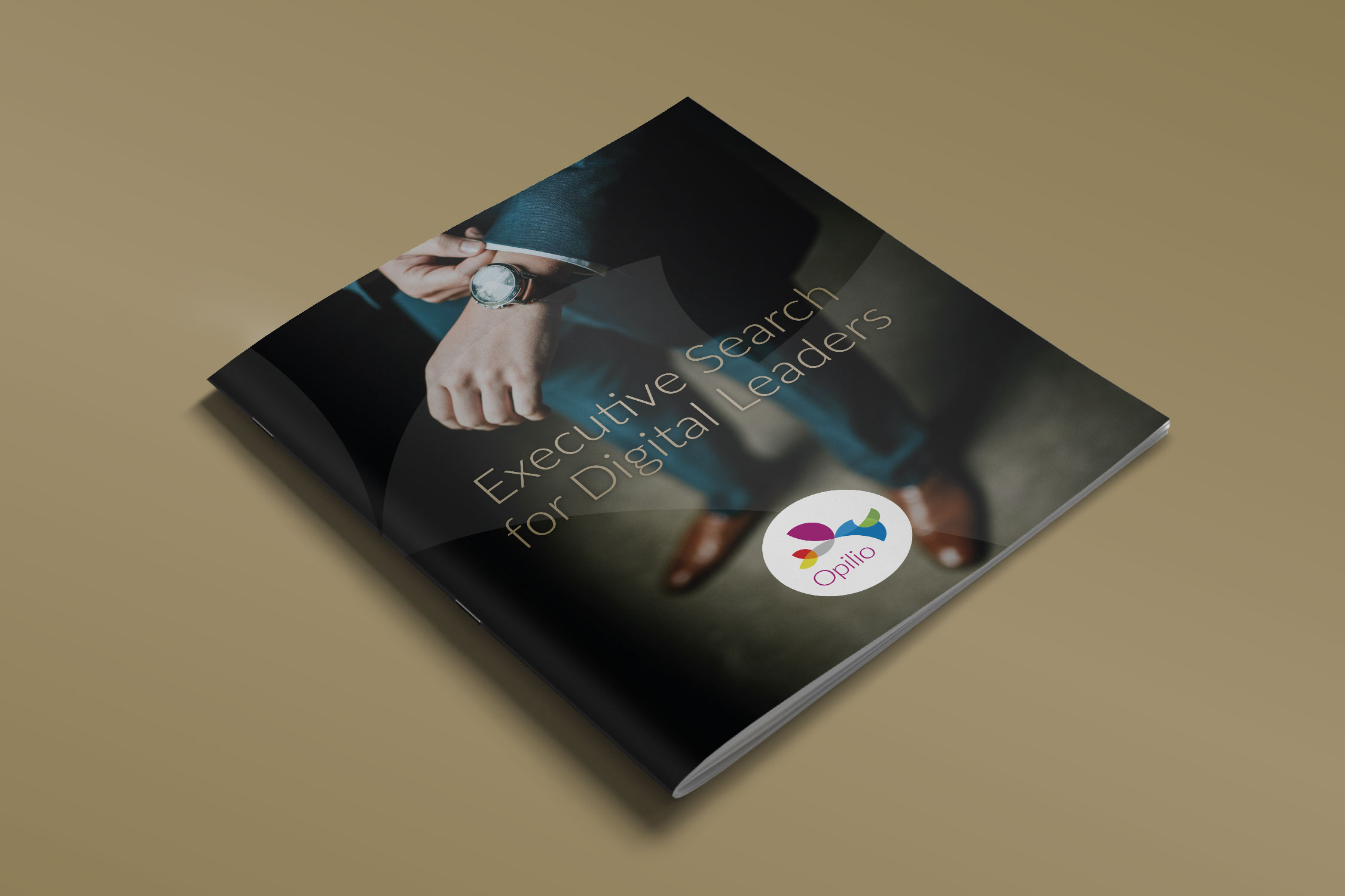 New brochure for an executive recruitment firm