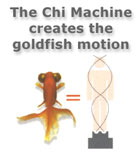 gold_fish_motion1_sm.jpg