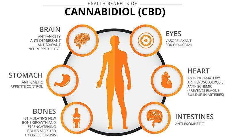 8-Health-Benefits-Of-CBD-Oil.jpg