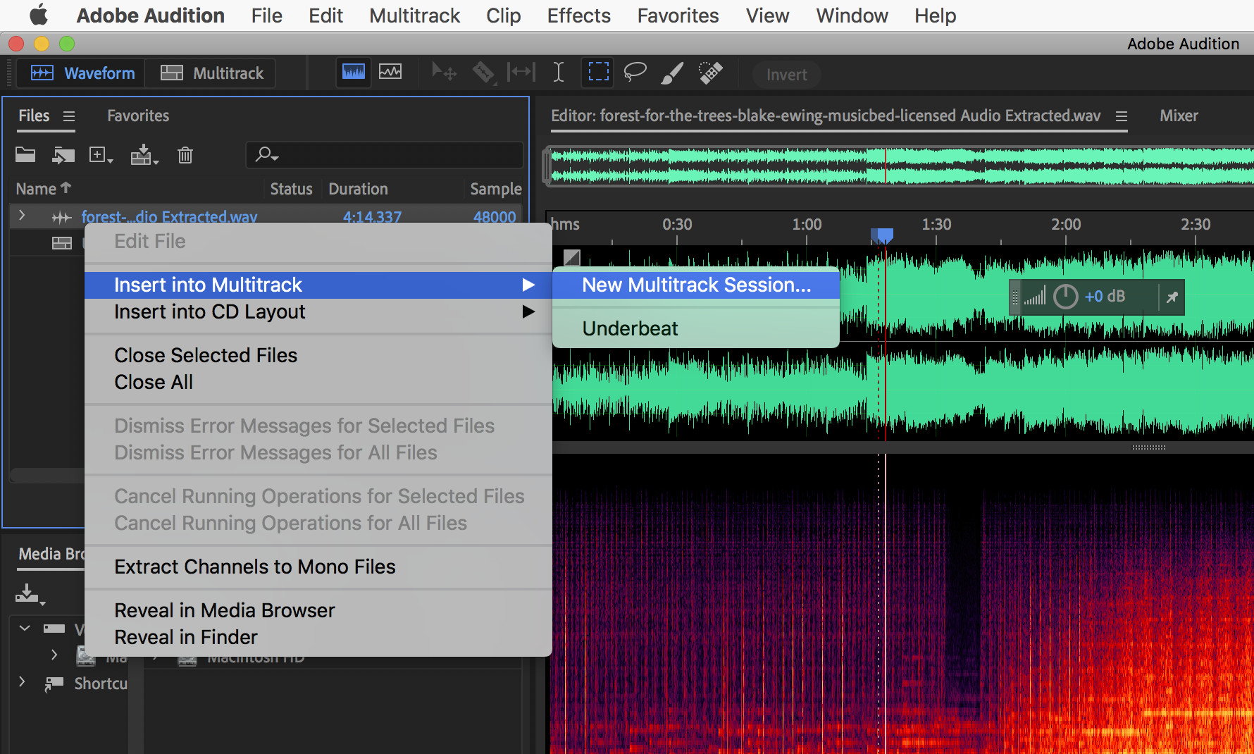 After you import your music track, right click to insert into a new multitrack session.