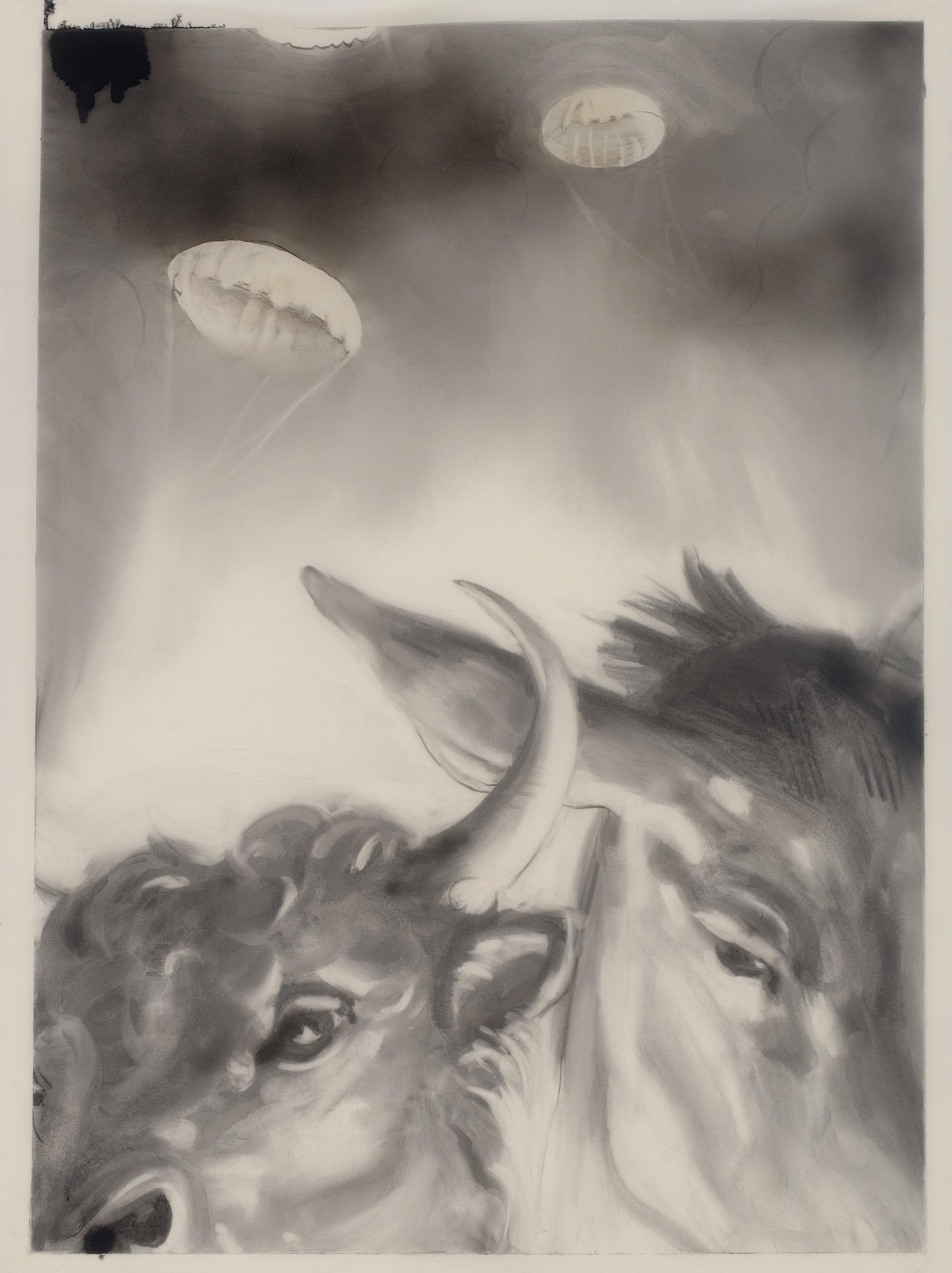 bull and donkey, 2012, graphite, charcoal, acrylic airbrush on vellum, 38%22x25%22.jpg