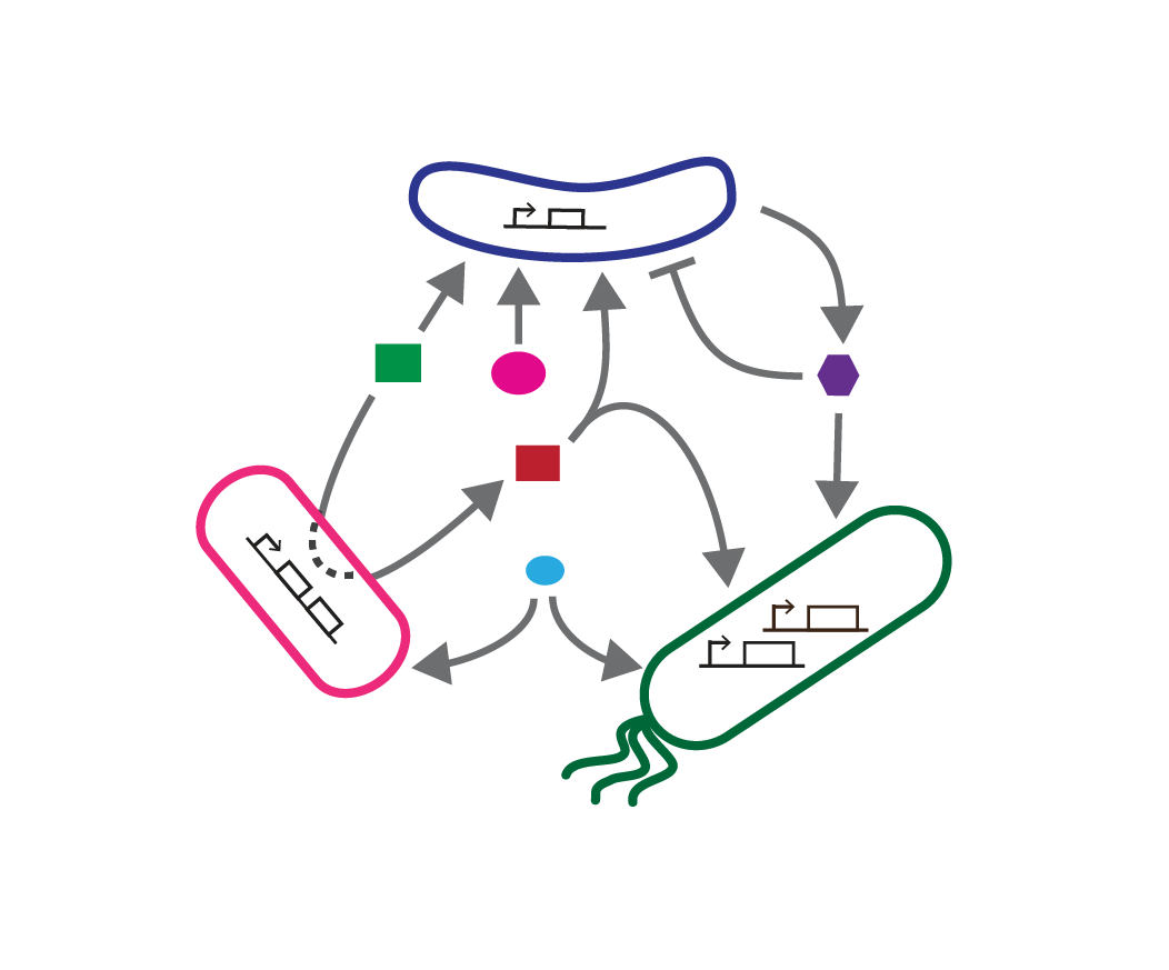 microbial_interactions-01-01.png