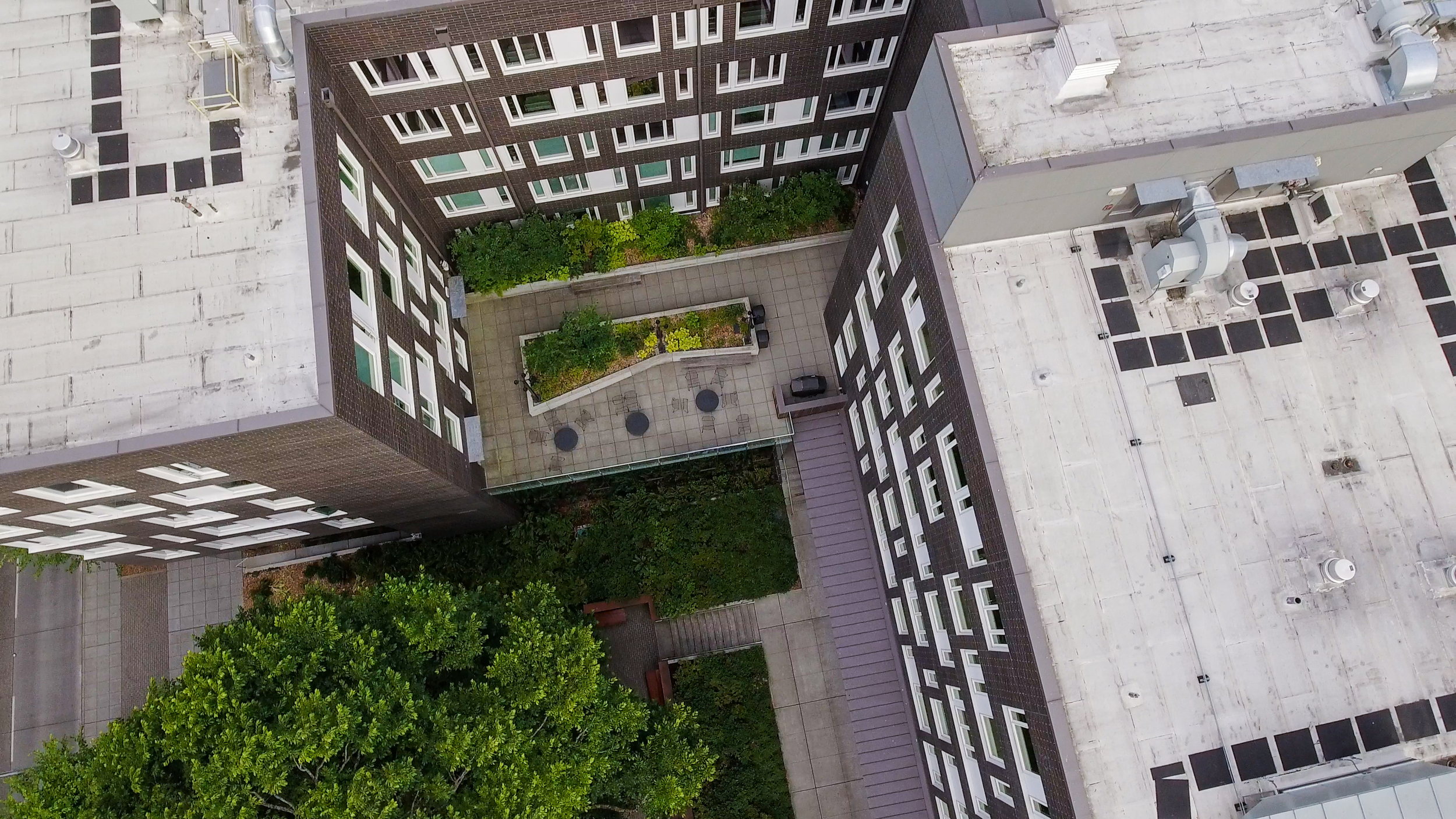 Elm Hall, University of Washington, Seattle