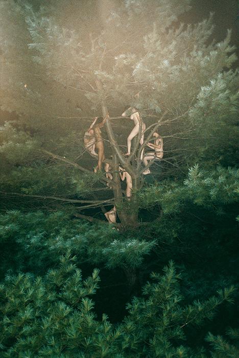 RyanMcGinley_Tree#3_2003.jpg