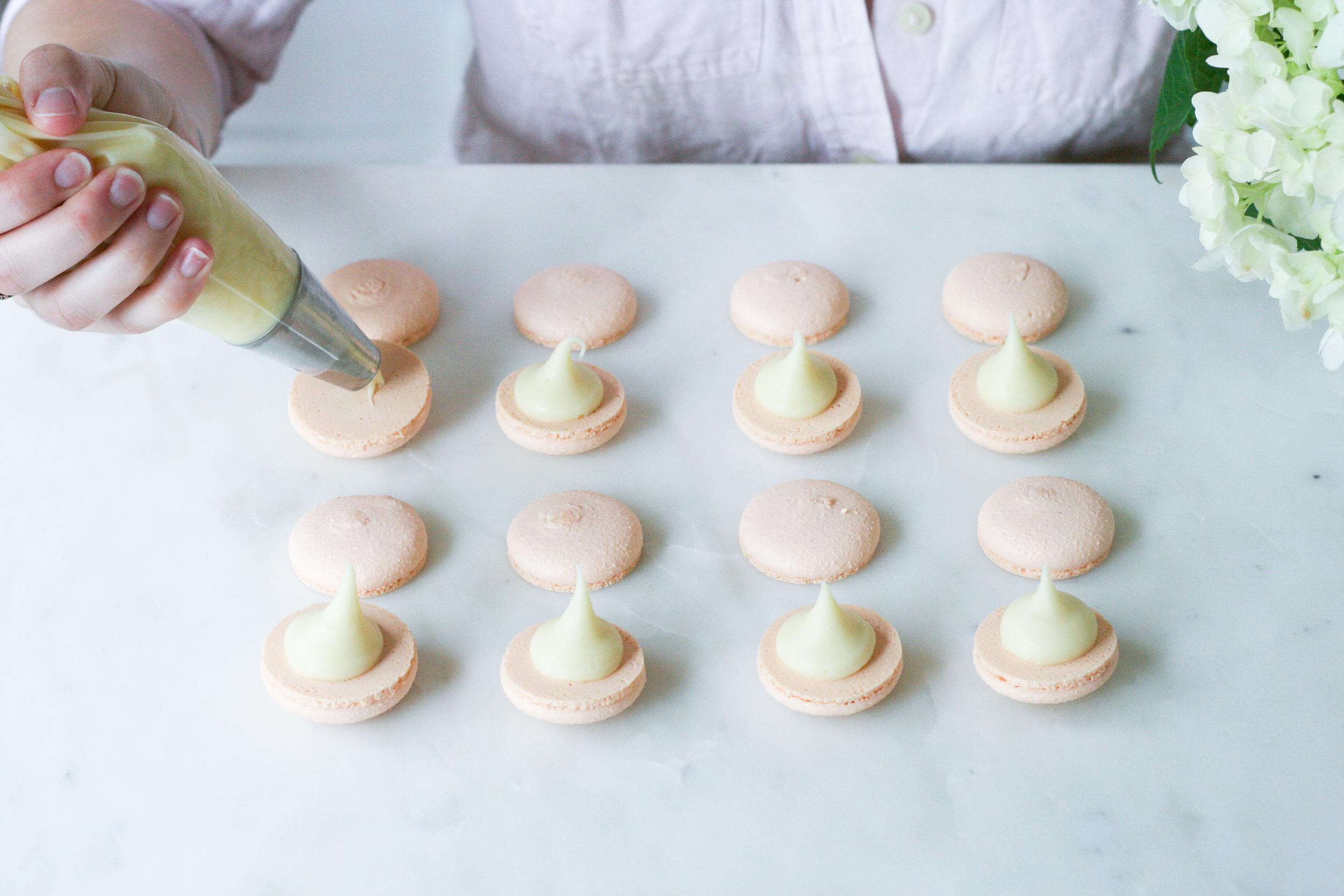 orange white chocolate macarons | sarah makes stuff
