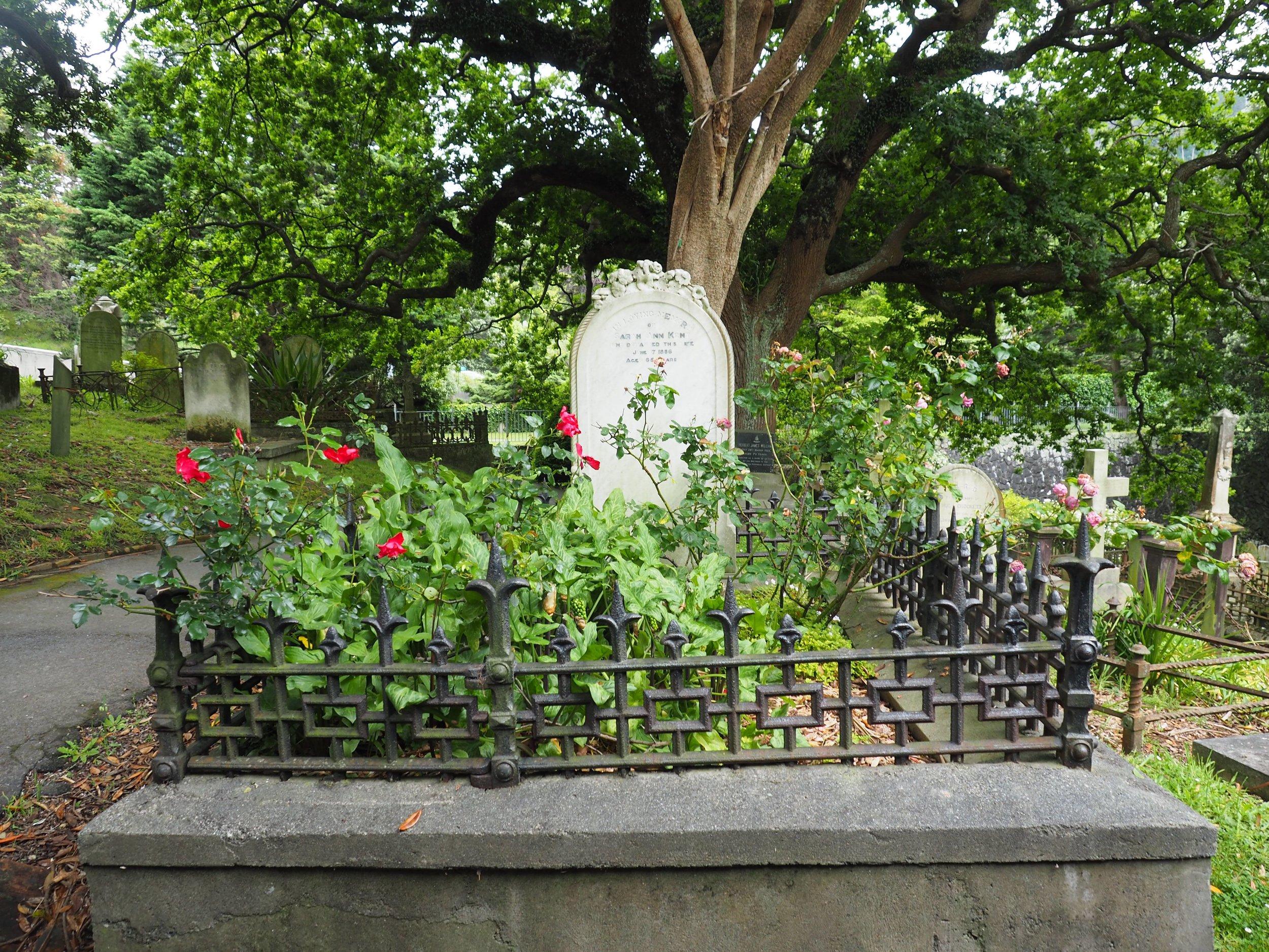 Old Roses - Part Three — The Ordinary Gardener