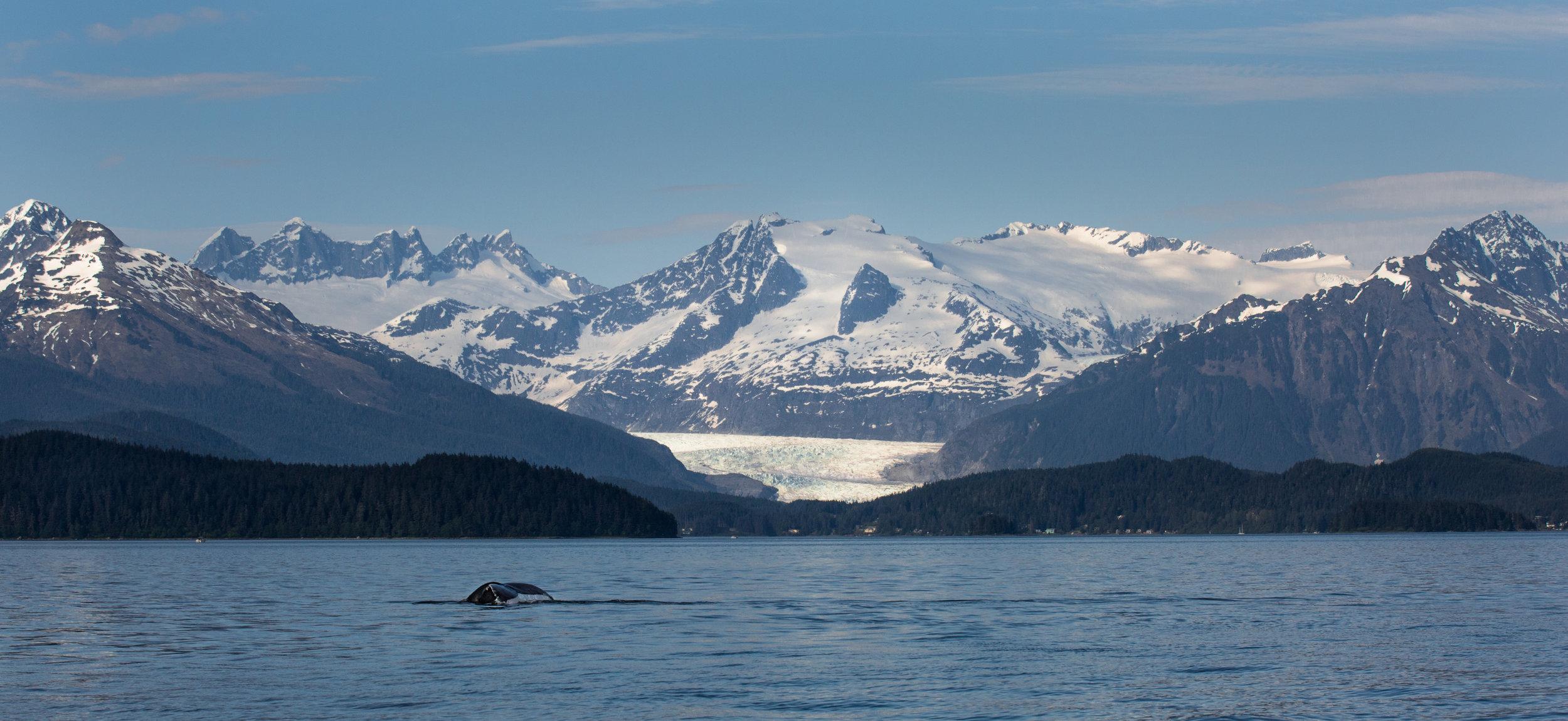 Juneau-1.jpg