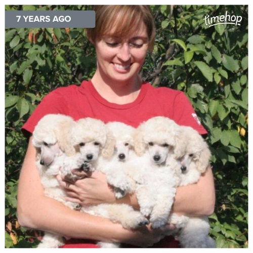 Happiness is an armful of puppies!