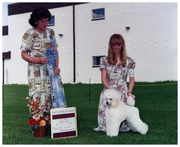 Best Puppy in Show under Phillis Wolfish