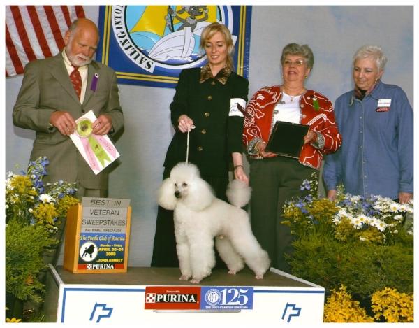 Best in Veteran Sweepstakes PCA 2009