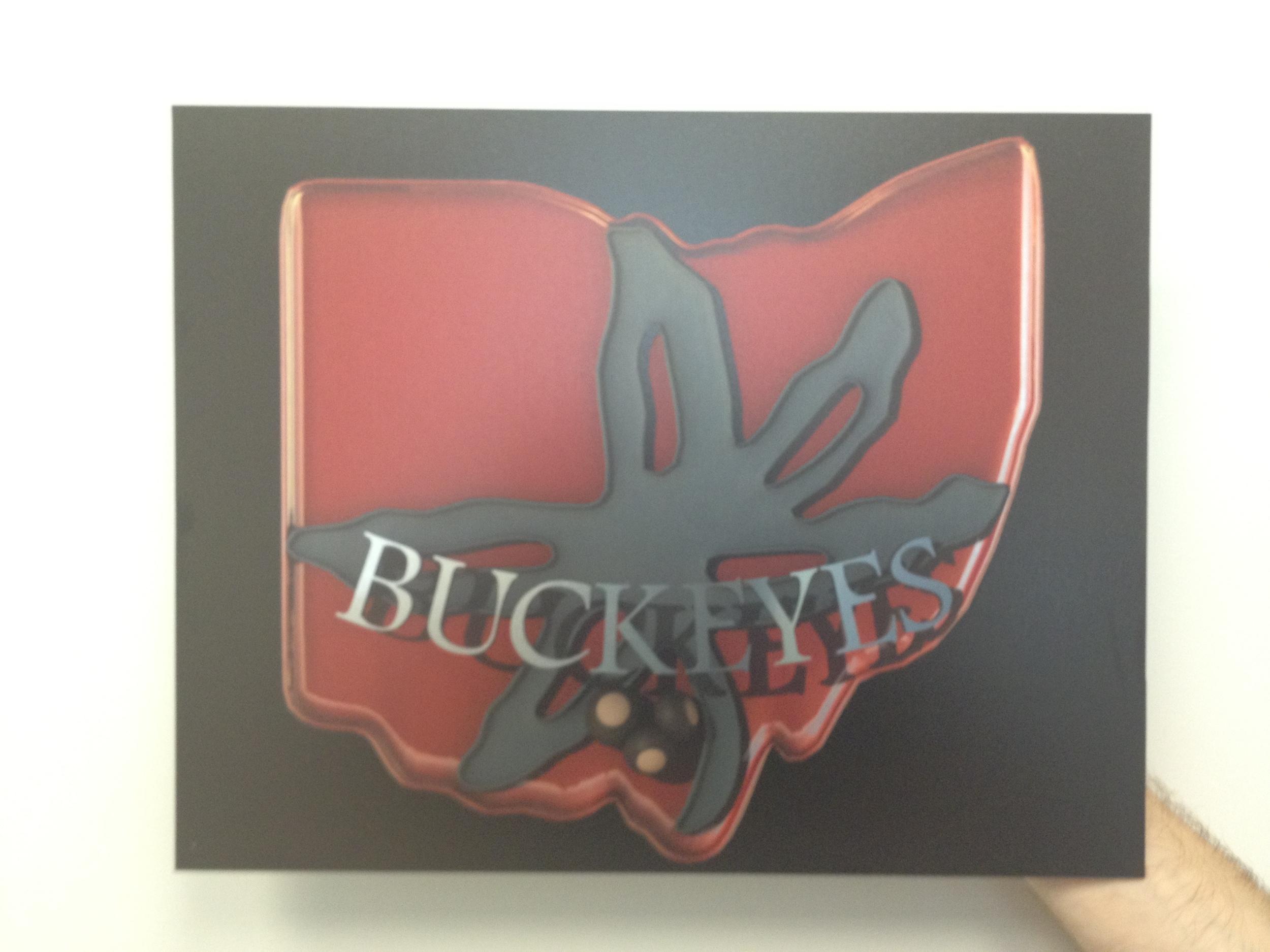 Ohio State 3D digital print