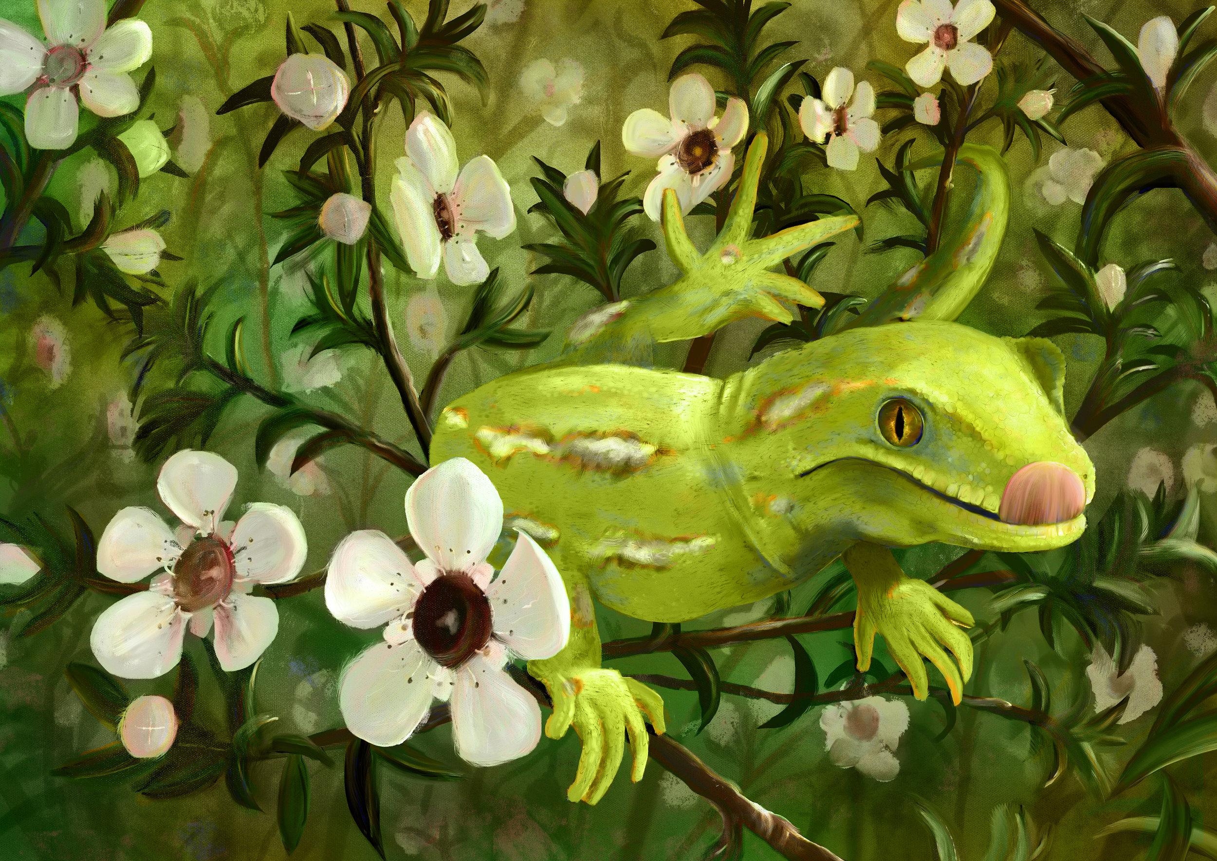 Gecko_Web.jpg