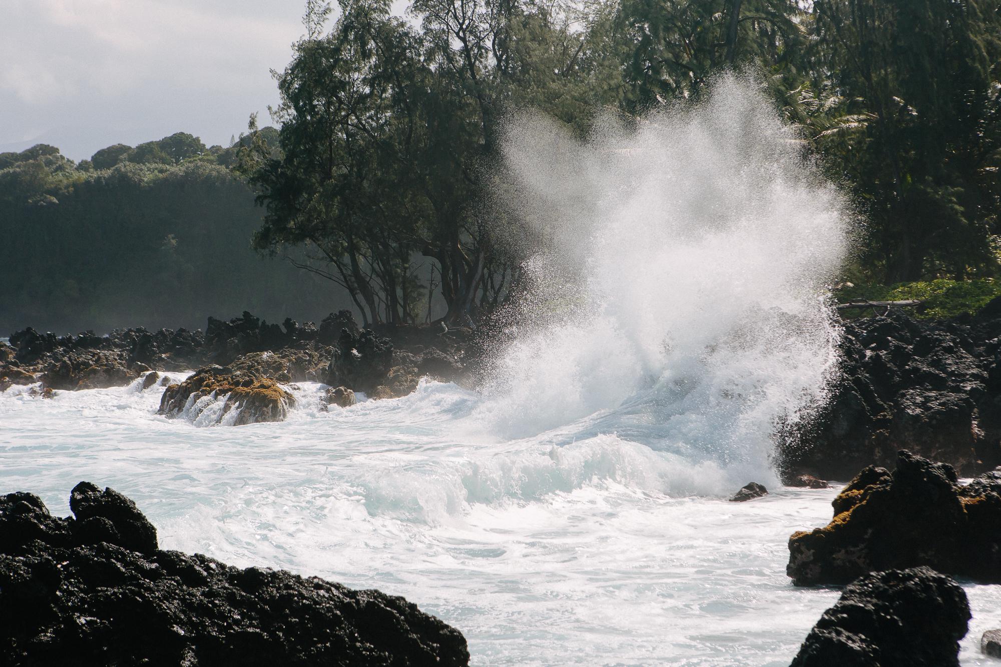 Hawaii_Maui_Dragana_P-25.jpg