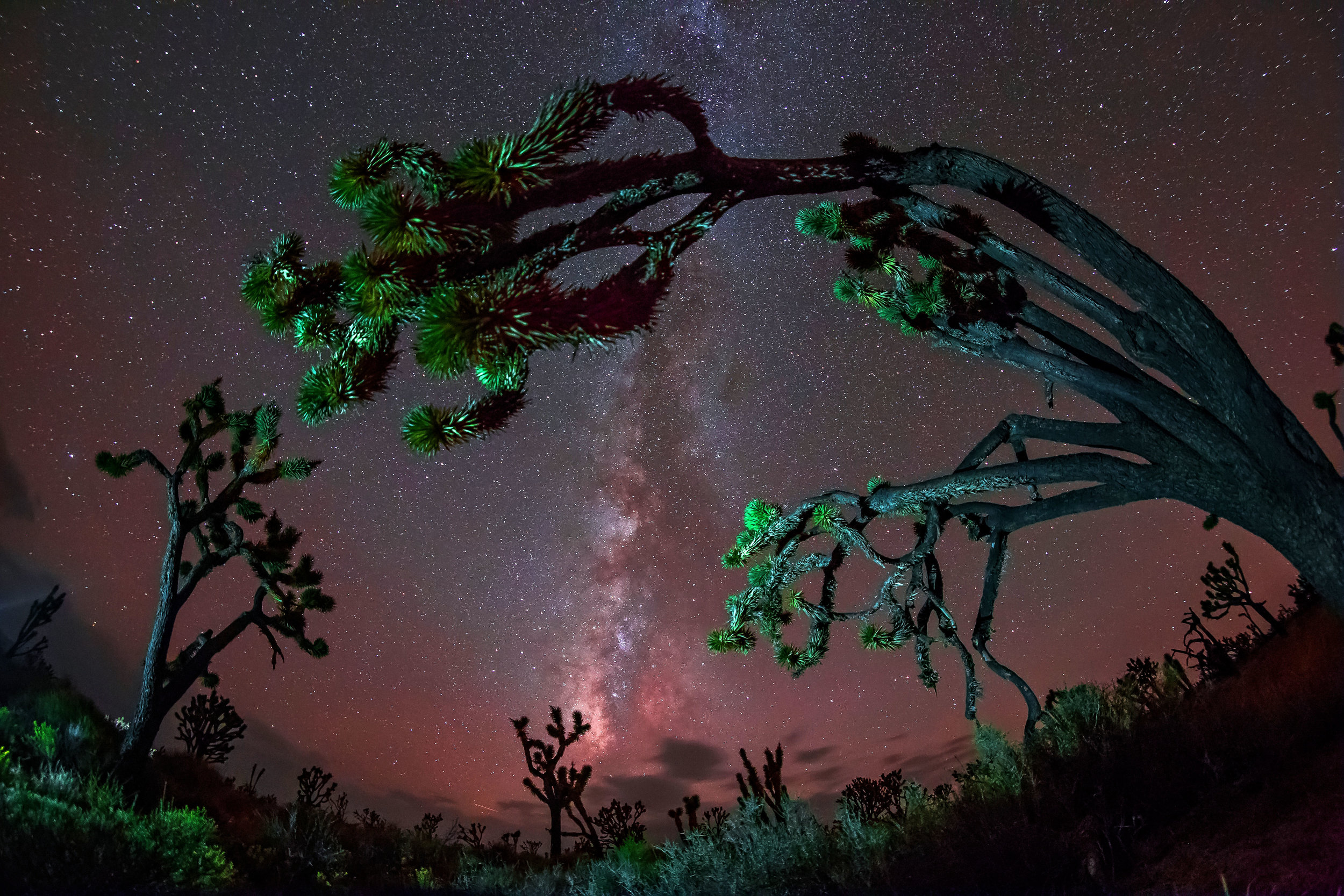 Mojave National Preserve, California, with Los Angeles skyglow intruding.