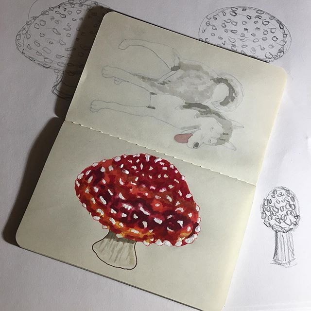 """Of course I'm going to do an """"enchanted"""" mushroom for inktober day 7! Amanita muscaria, aka fly agaric. 🍄"""