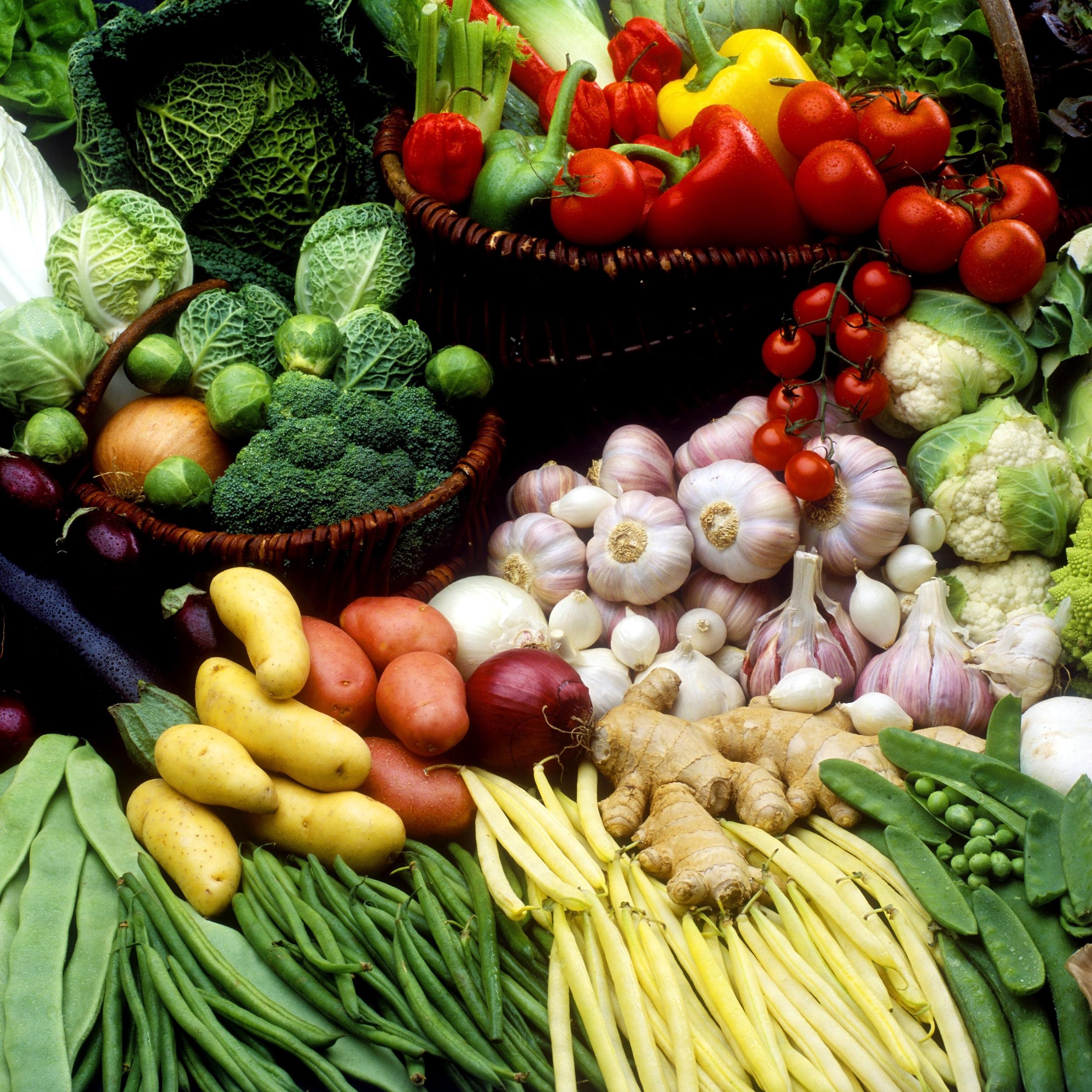 vegetable-still-life photo.jpg