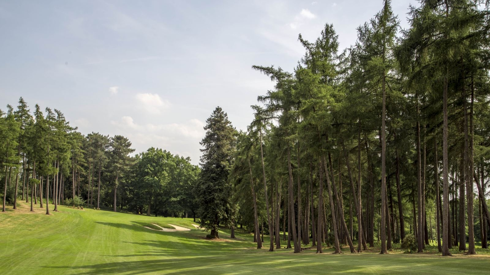 Brocket Hall - Friday 16th August