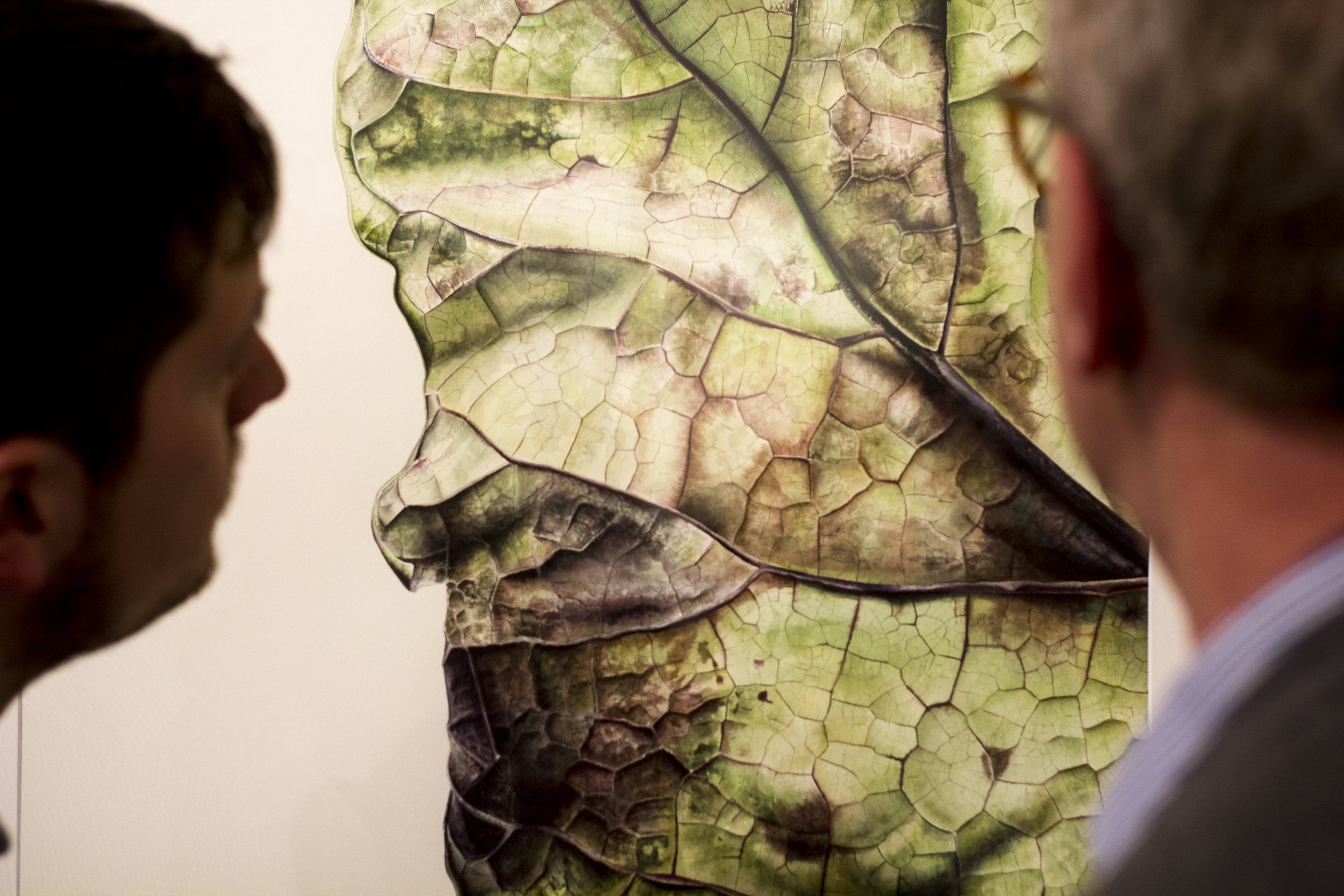 PHOTOGRAPHY COVERAGE OF 'LEAFSCAPE' BY JESS SHEPHERD. ABBOTT & HOLDER, LONDON