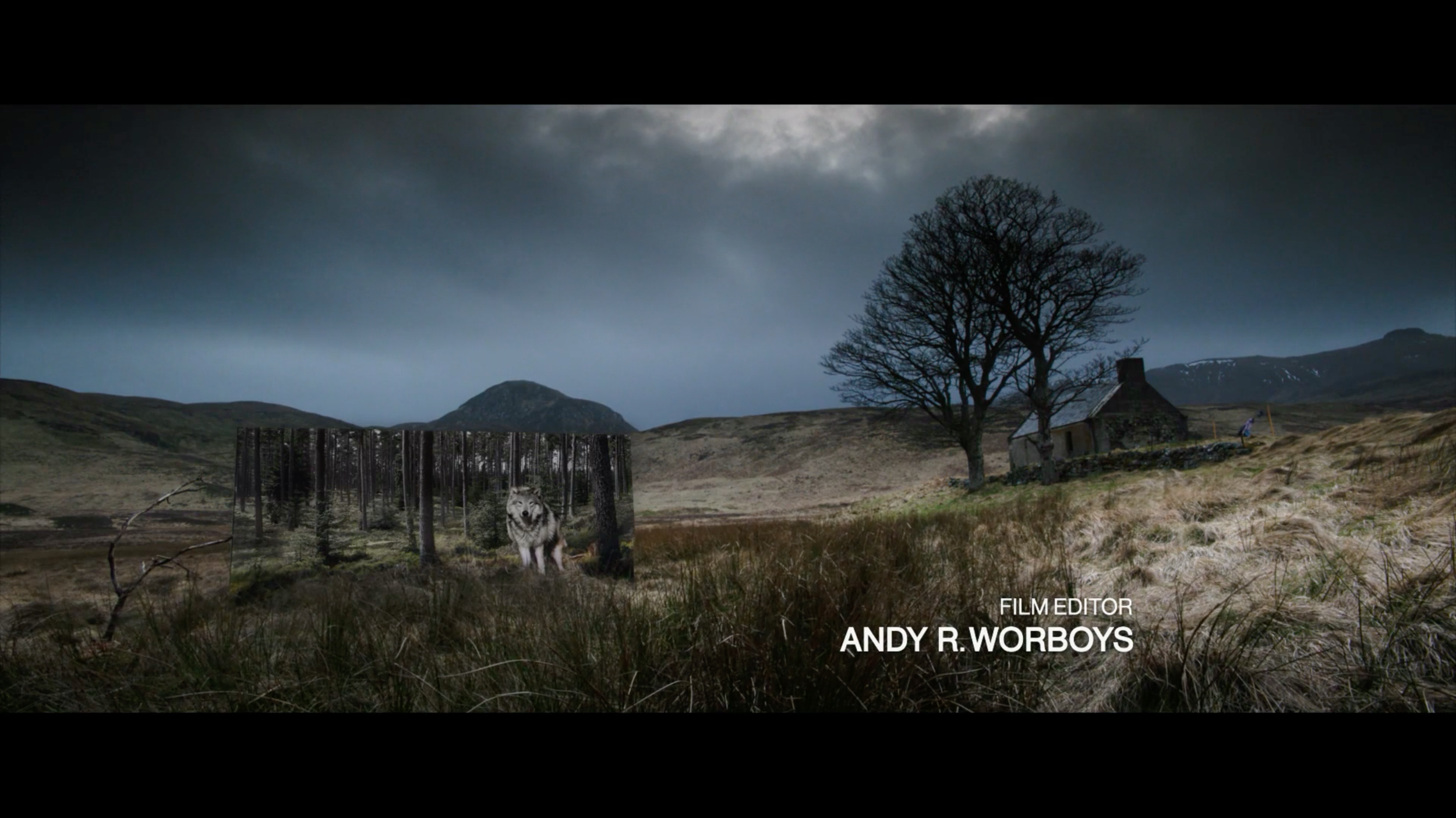 Wolf Billboard in Scottish Highlands.png