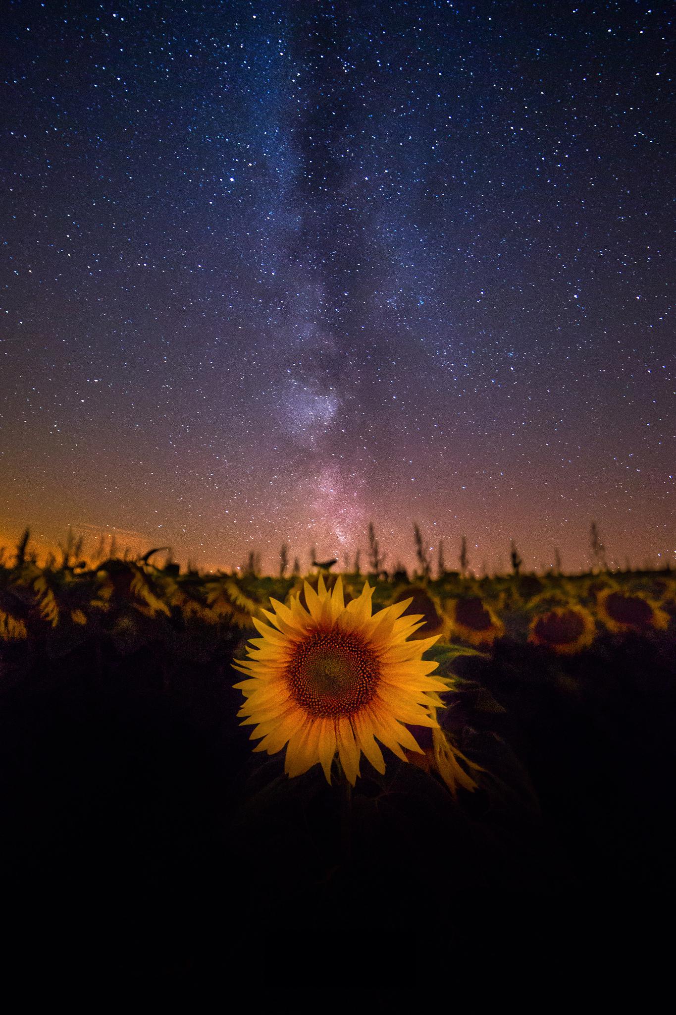 The-sun-at-Night.jpg