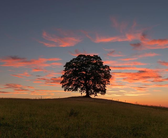 Jel jsem fotit nocni oblohu a veatil jsem se se zapadem 🌄🌞