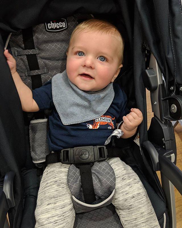 RoRo enjoying a bit of Saturday shopping!