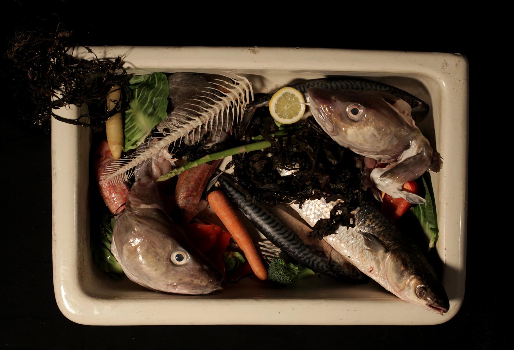 ©NicolasIordanou&SylviaNicolaides - fish a deli.jpg