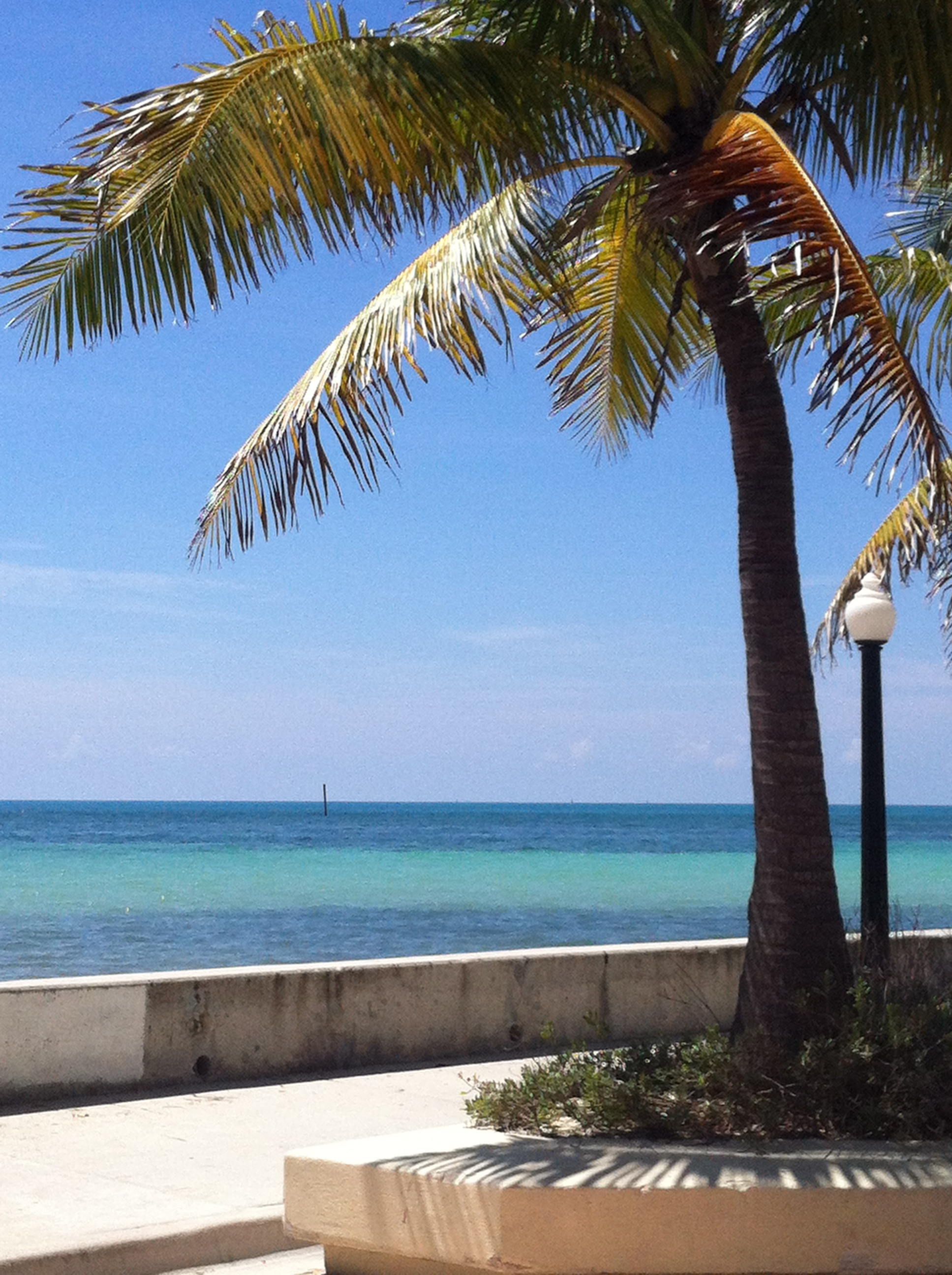 Gorgeous tropical views abound in Key West