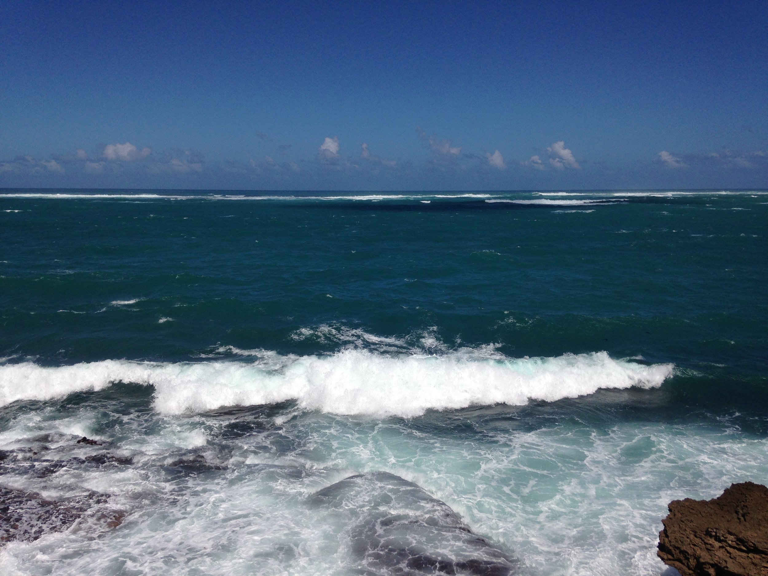 View from the infinity pool at the Condado Vanderbilt hotel