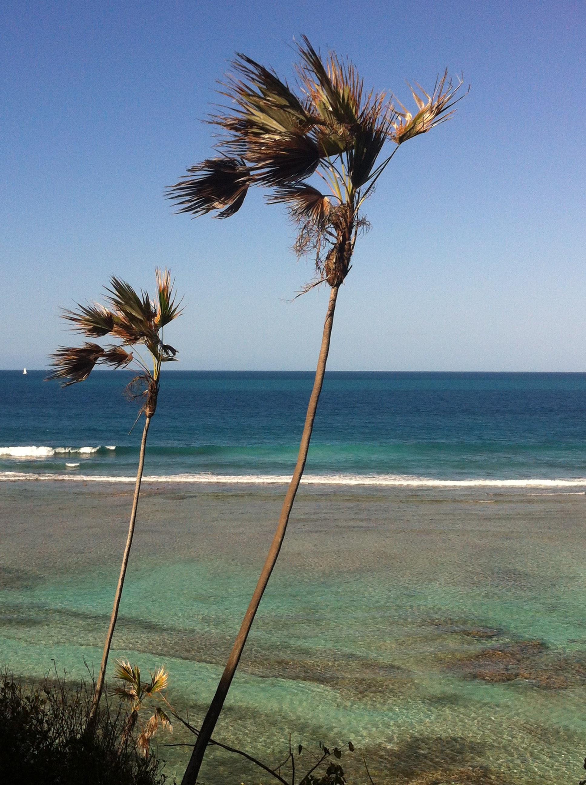North Beach Scrub Island view