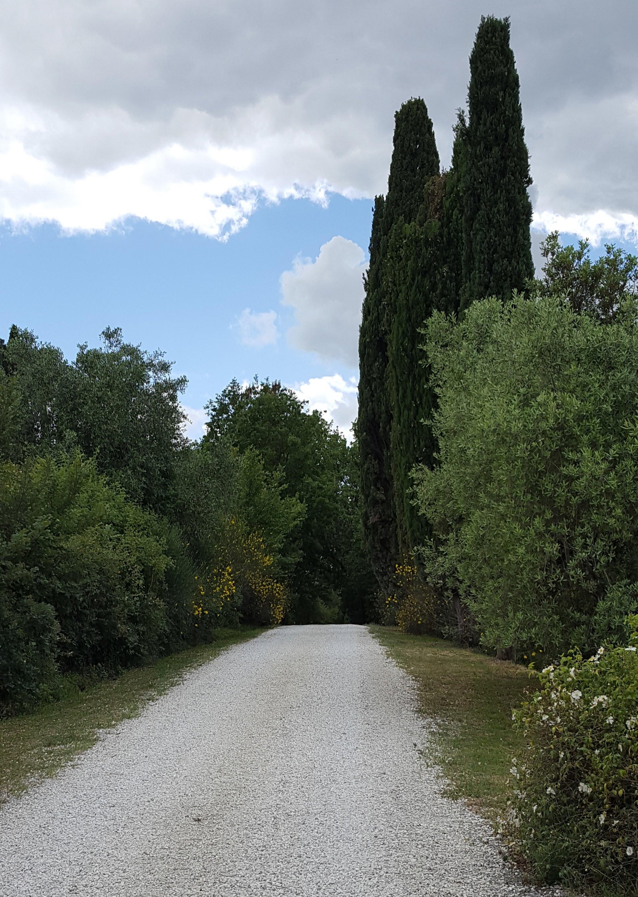 The driveway to Poggio Piglia