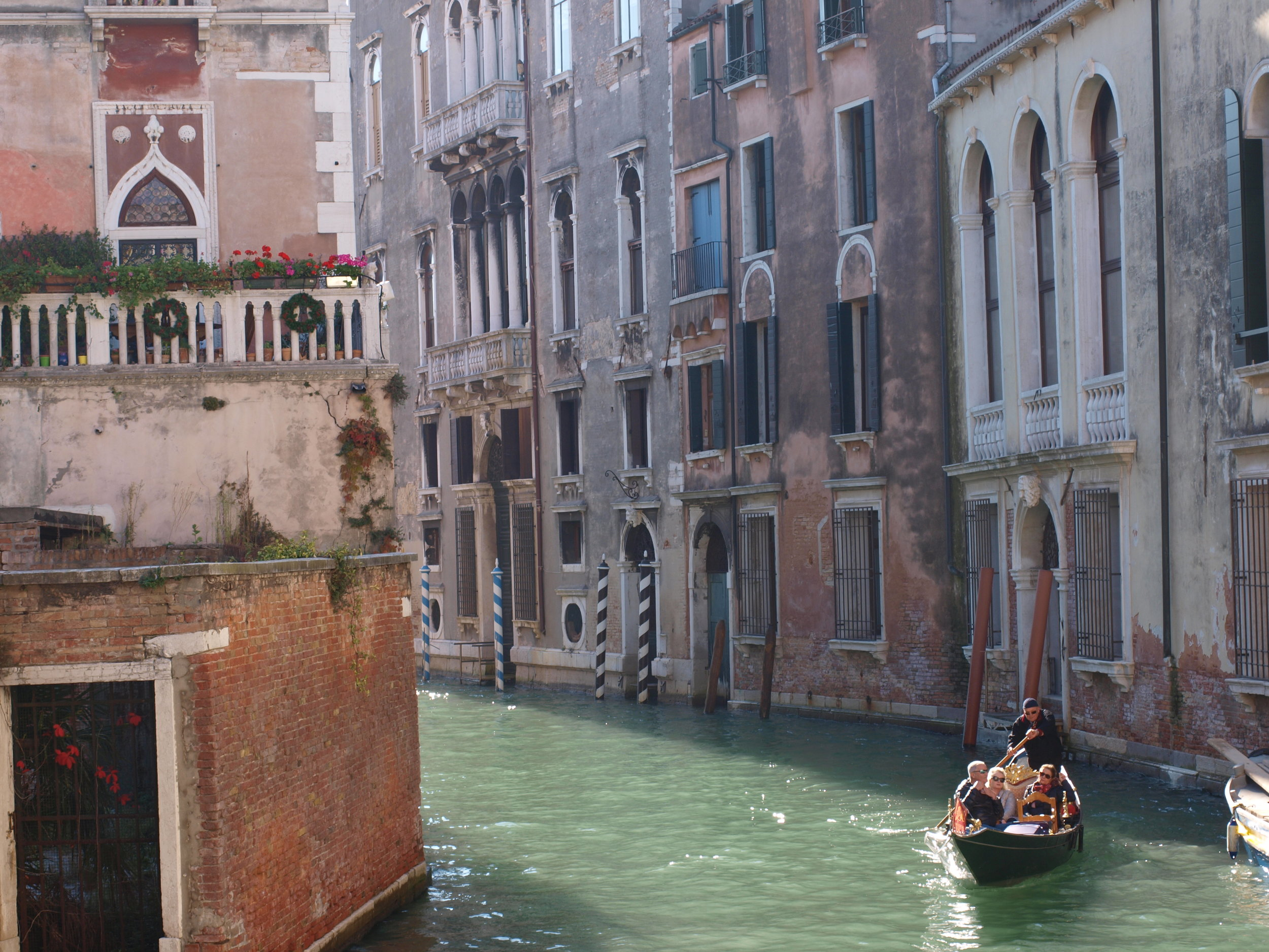 Venice is filled with pure beauty like this!
