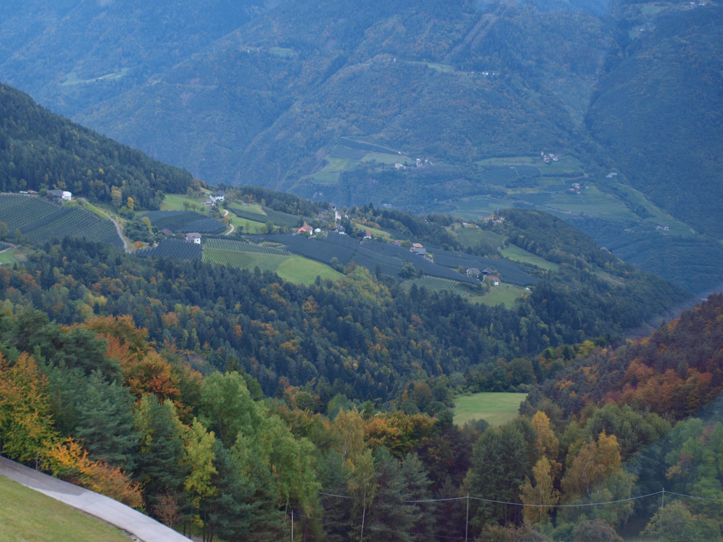 The valley below (taken from the gondola)