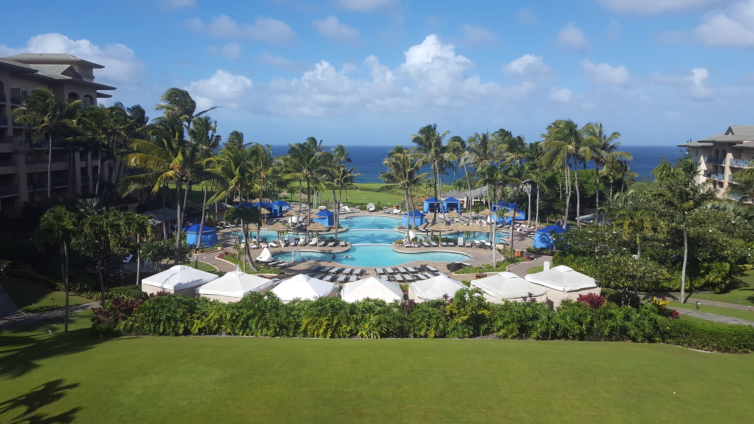 The pool at the RItz Carlton Kapalua