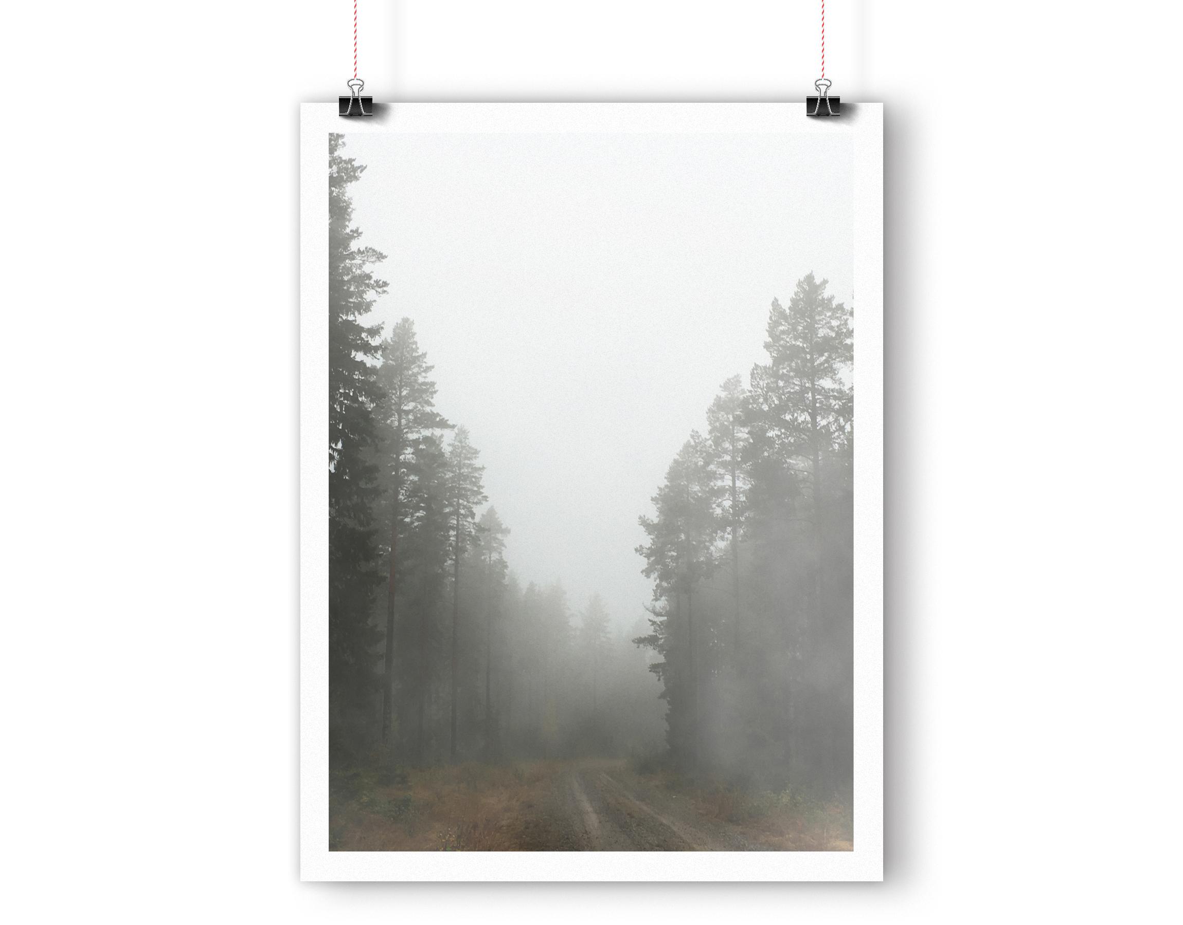foggyforest_mockup2.jpg