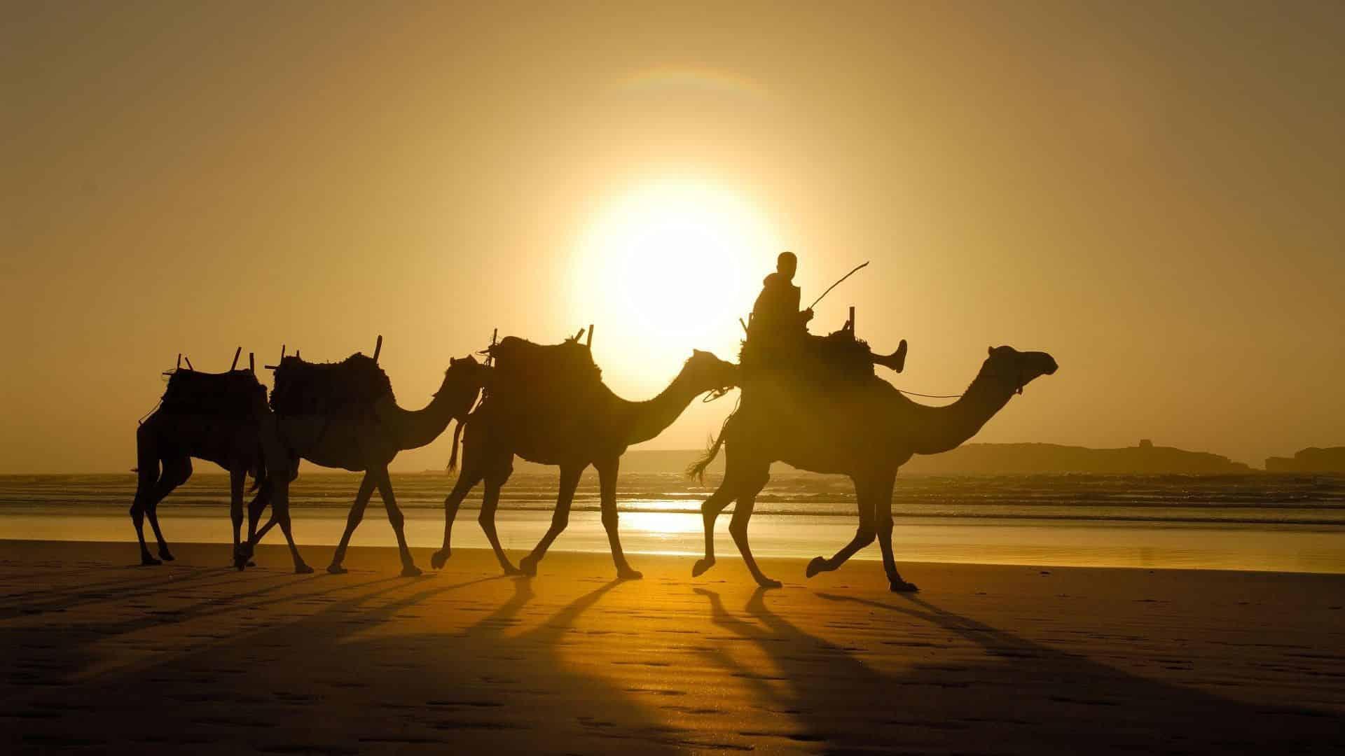 Reizen-naar-Marokko.jpg