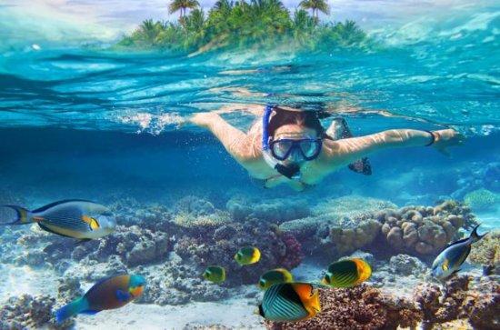 koh-samui-snorkeling.jpg