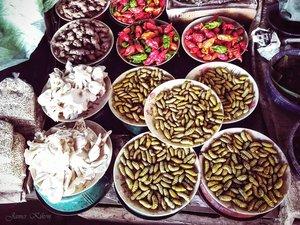 bizarre+exotic+food+naga+nagaland-silk+worms2.jpg