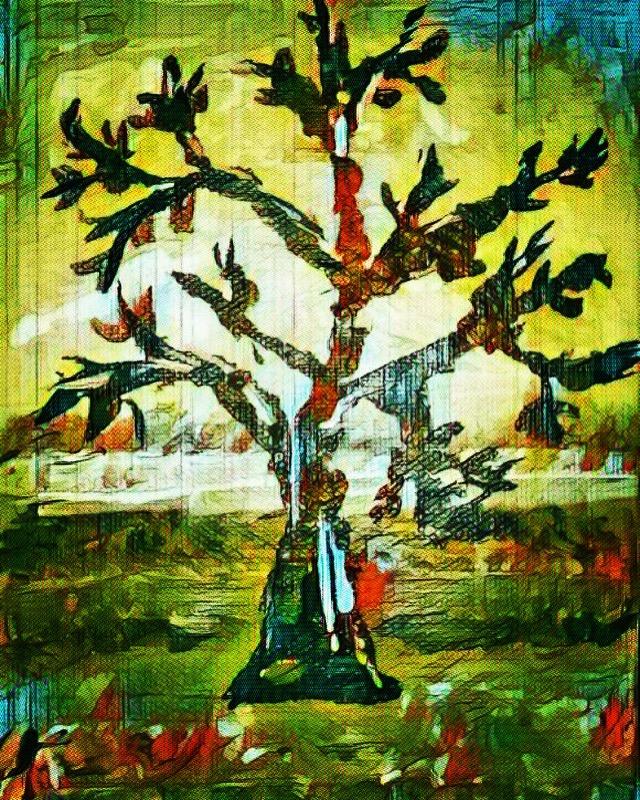 Enlightened Tree.jpg